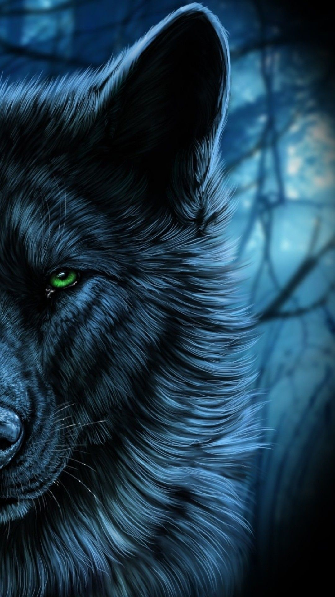 Moving Wolf Wallpapers 72 Images
