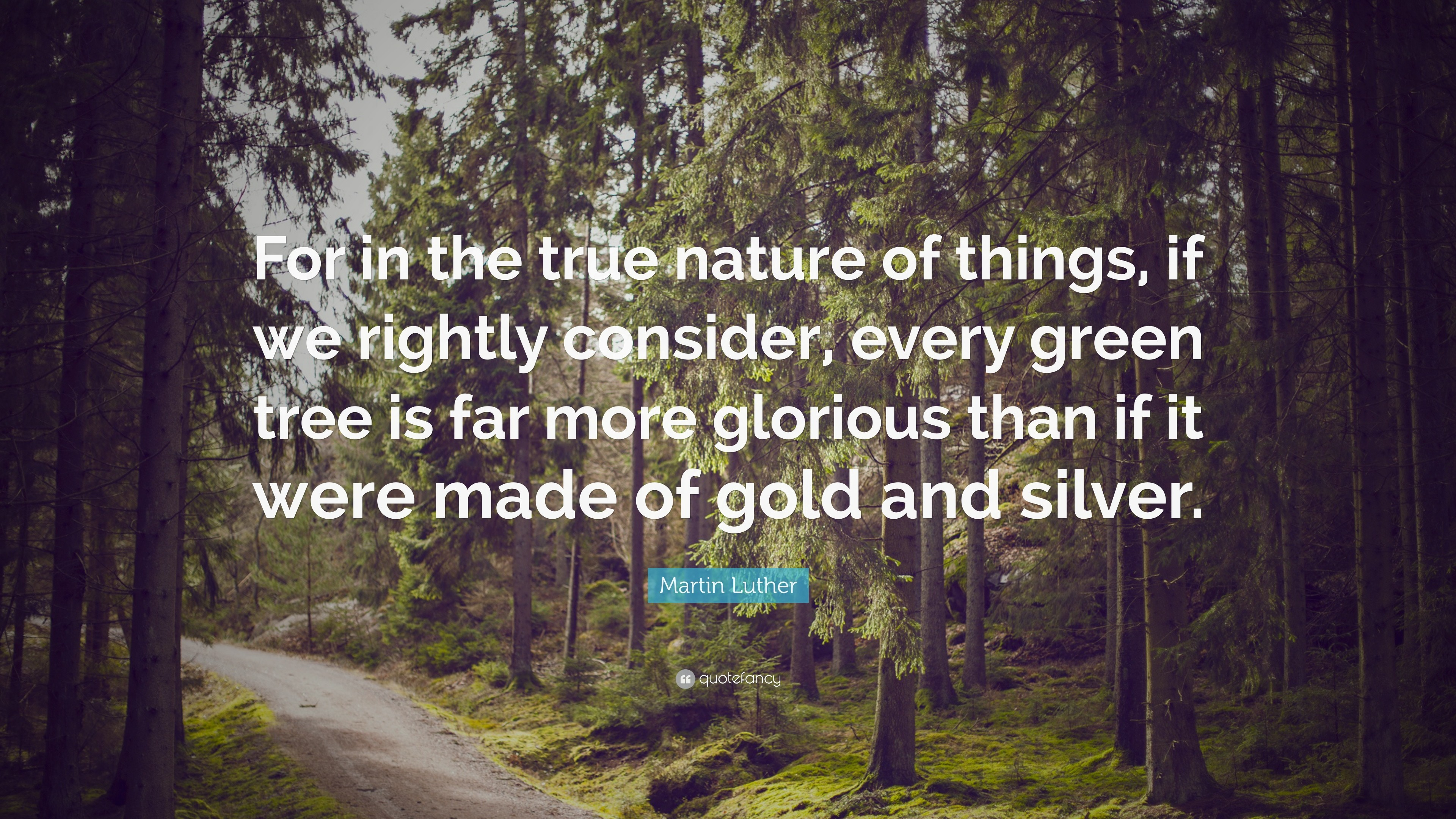 "3840x2160 Nature Quotes: ""For in the true nature of things, if we rightly consider"
