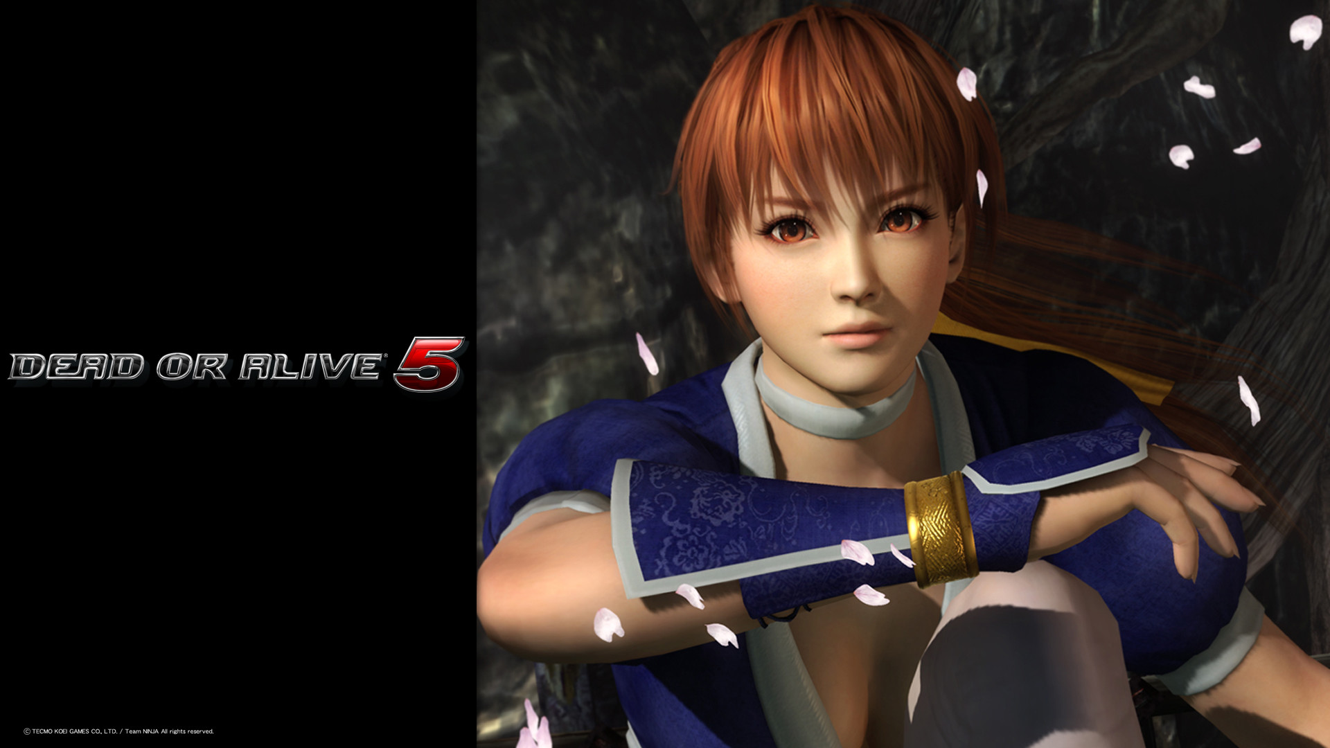 1920x1080 Tags: Anime, Dead or Alive, Kasumi (Dead or Alive), Wallpaper