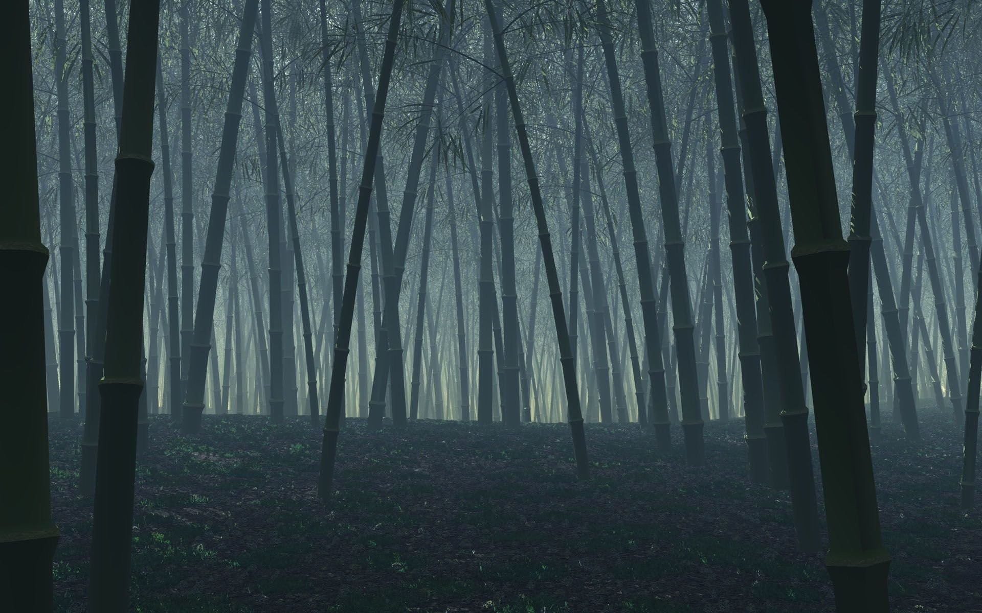 1920x1200 Dark Bamboo Forest Desktop Background.