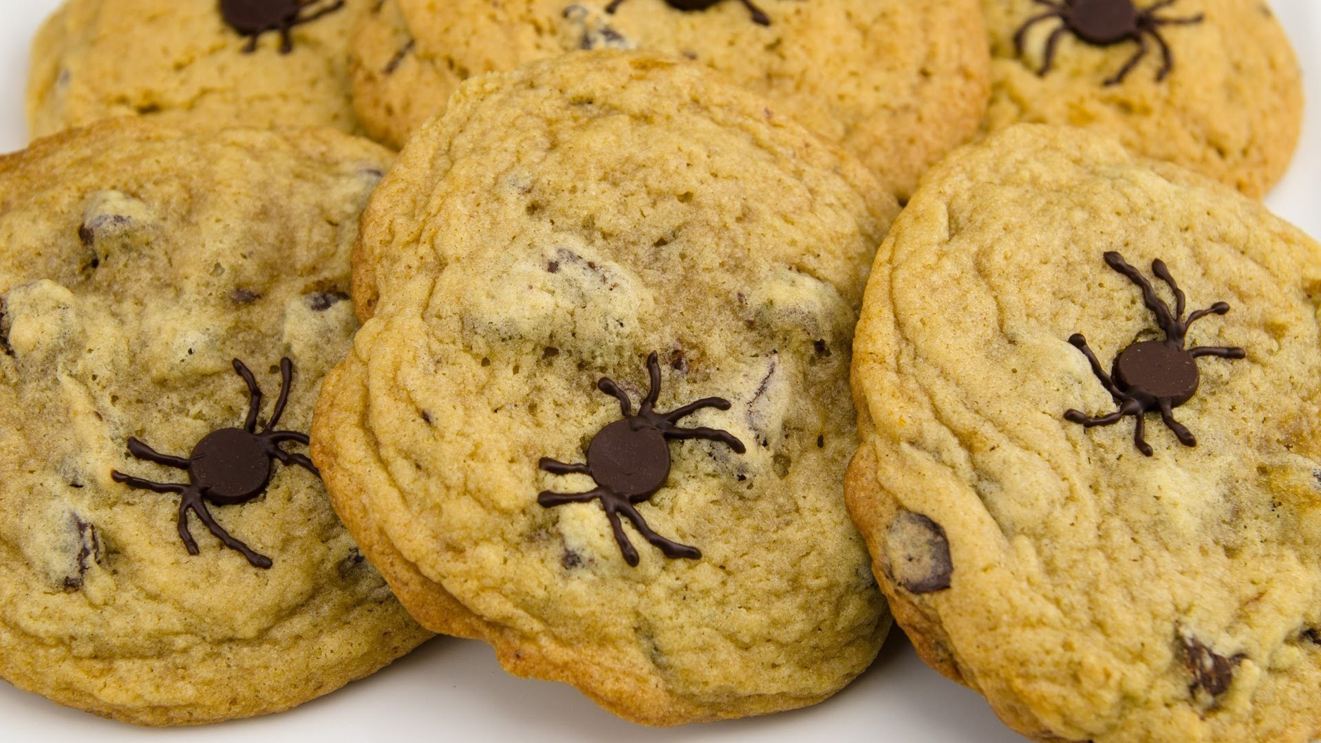 chocolate chip cookie wallpaper 48 images