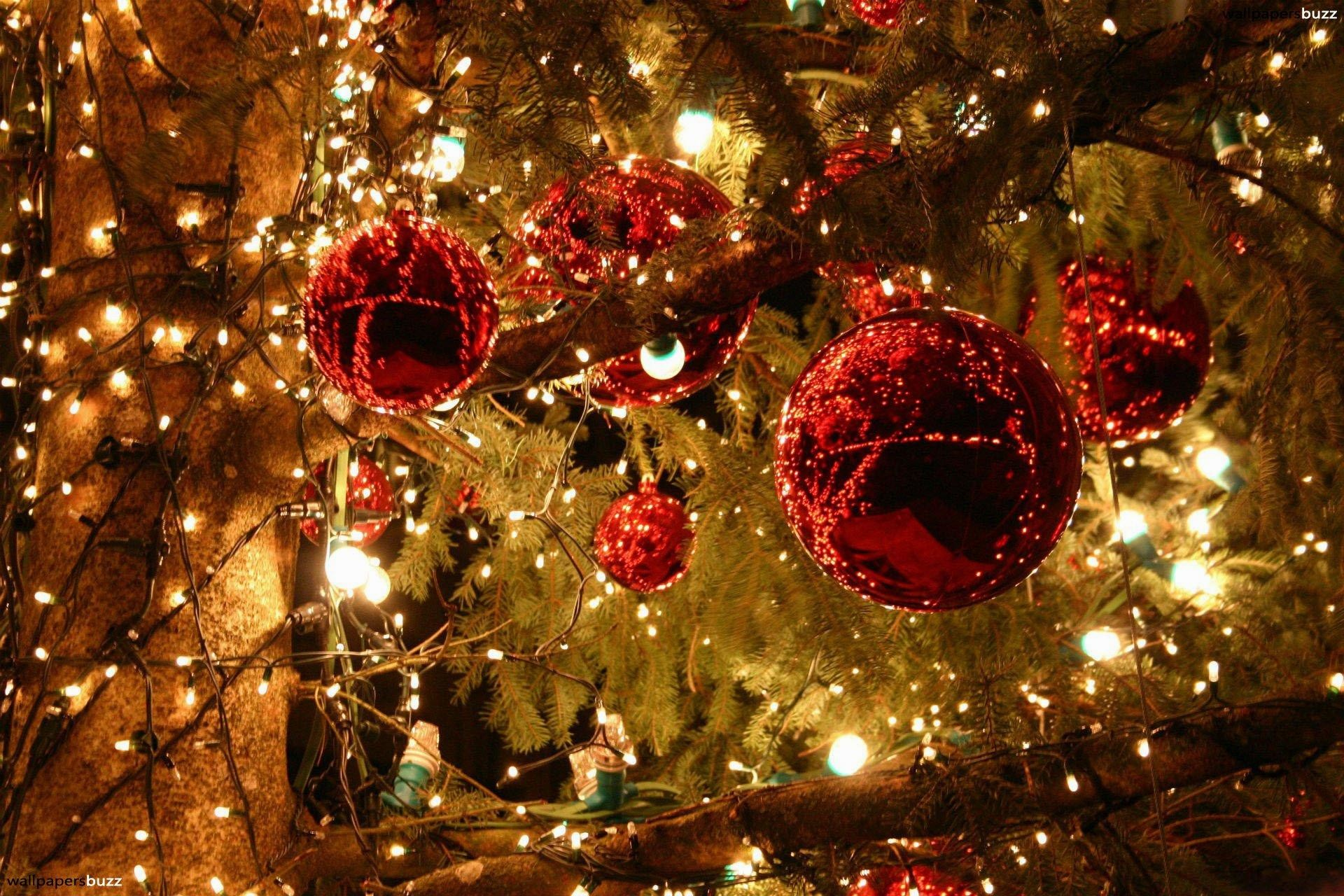 1920x1280 wallpaper.wiki-Wallpaper-Christmas-Lights-PIC-WPB002731