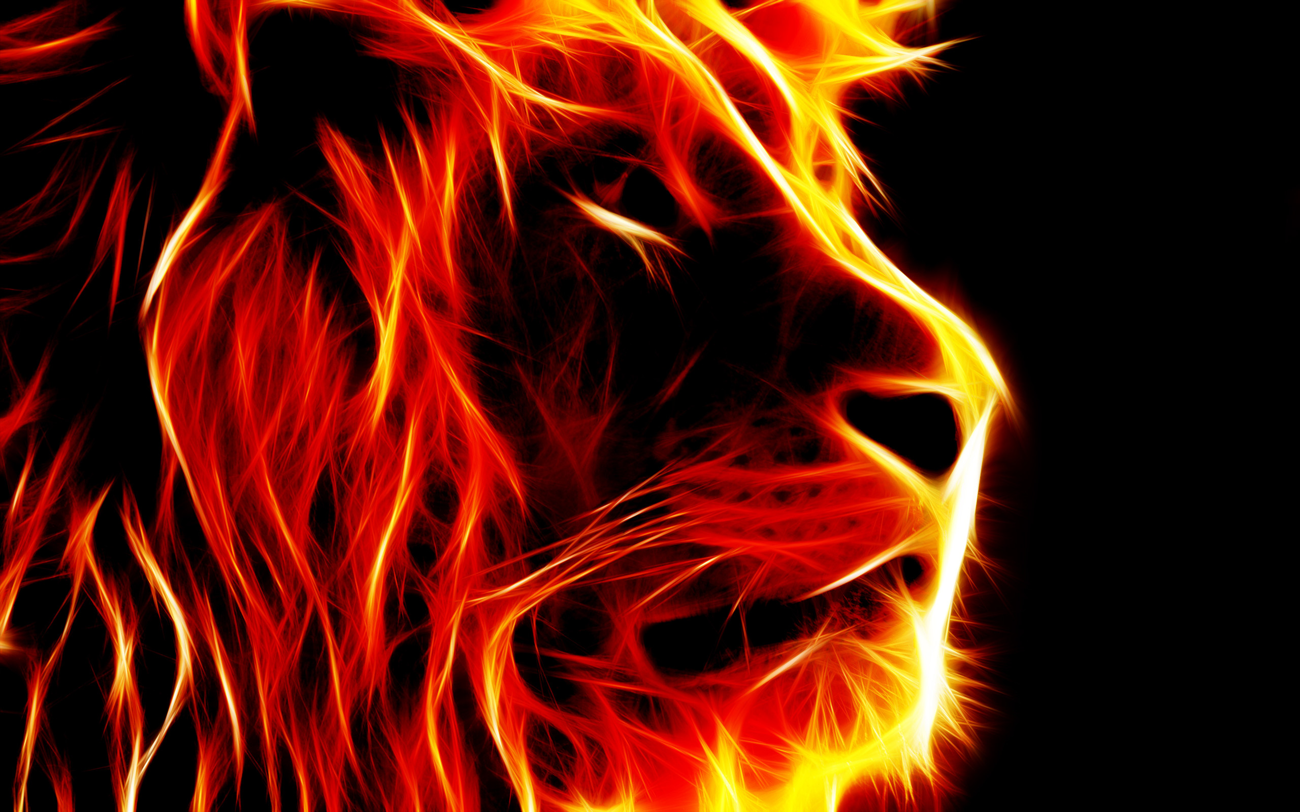 2560x1600 Lion-shaped pictures of fire -free pictures