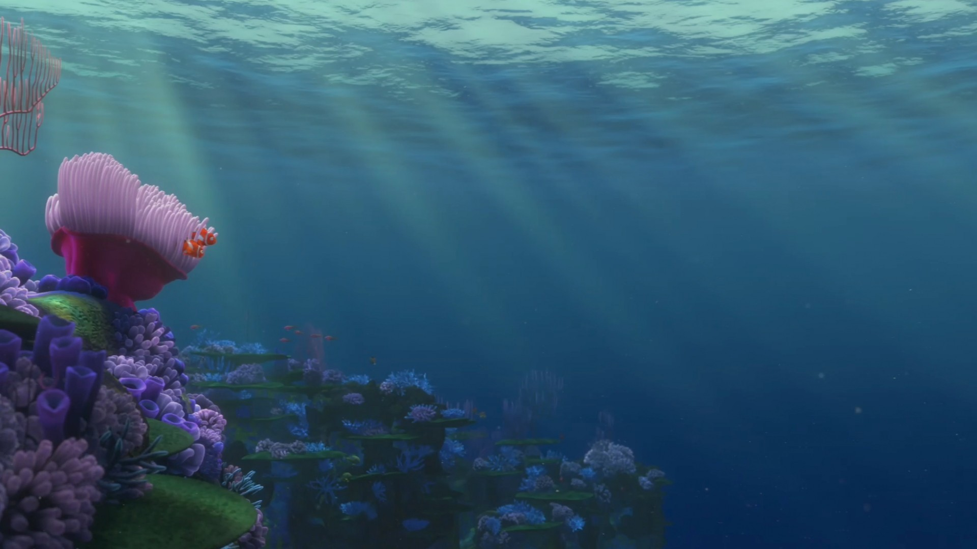 Finding Nemo Backgrounds (59+ Images
