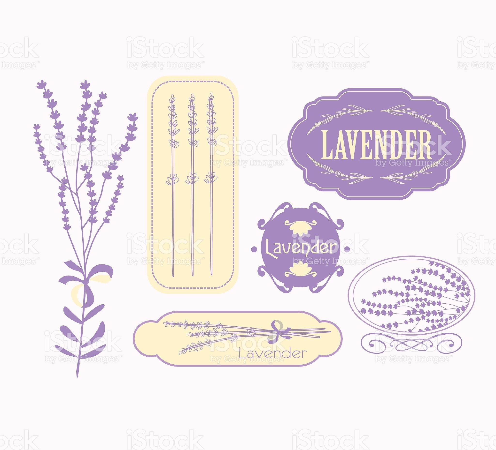 2048x1860 Vintage lavender background, aromatherapy and spa packaging design stock  vector art 60307982 - iStock