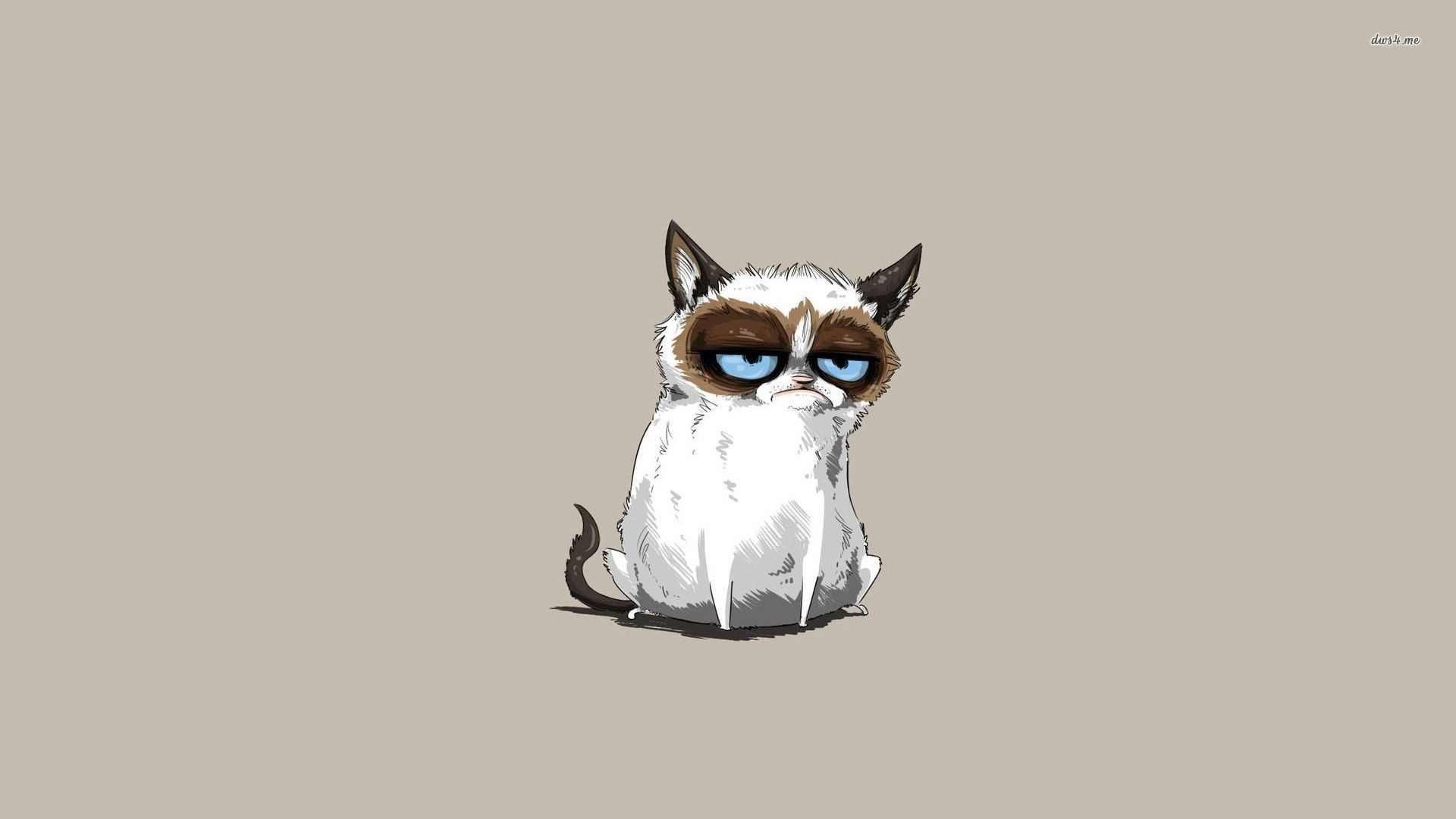 1920x1080 Cat · Grumpy Cat Wallpaper Background with HD ...