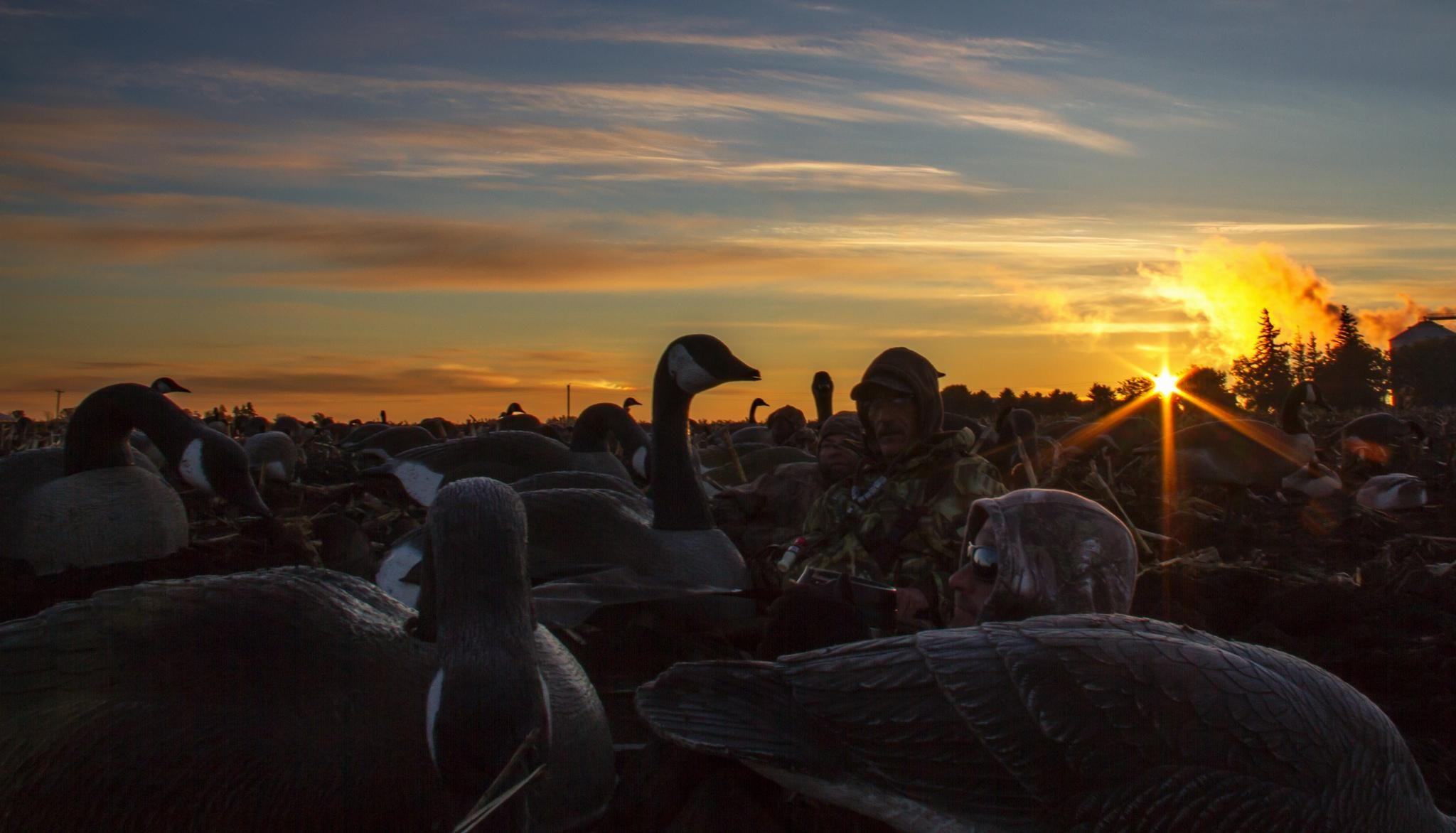 2048x1172 wallpaper.wiki-Duck-Hunting-Photo-HD-PIC-WPD008134
