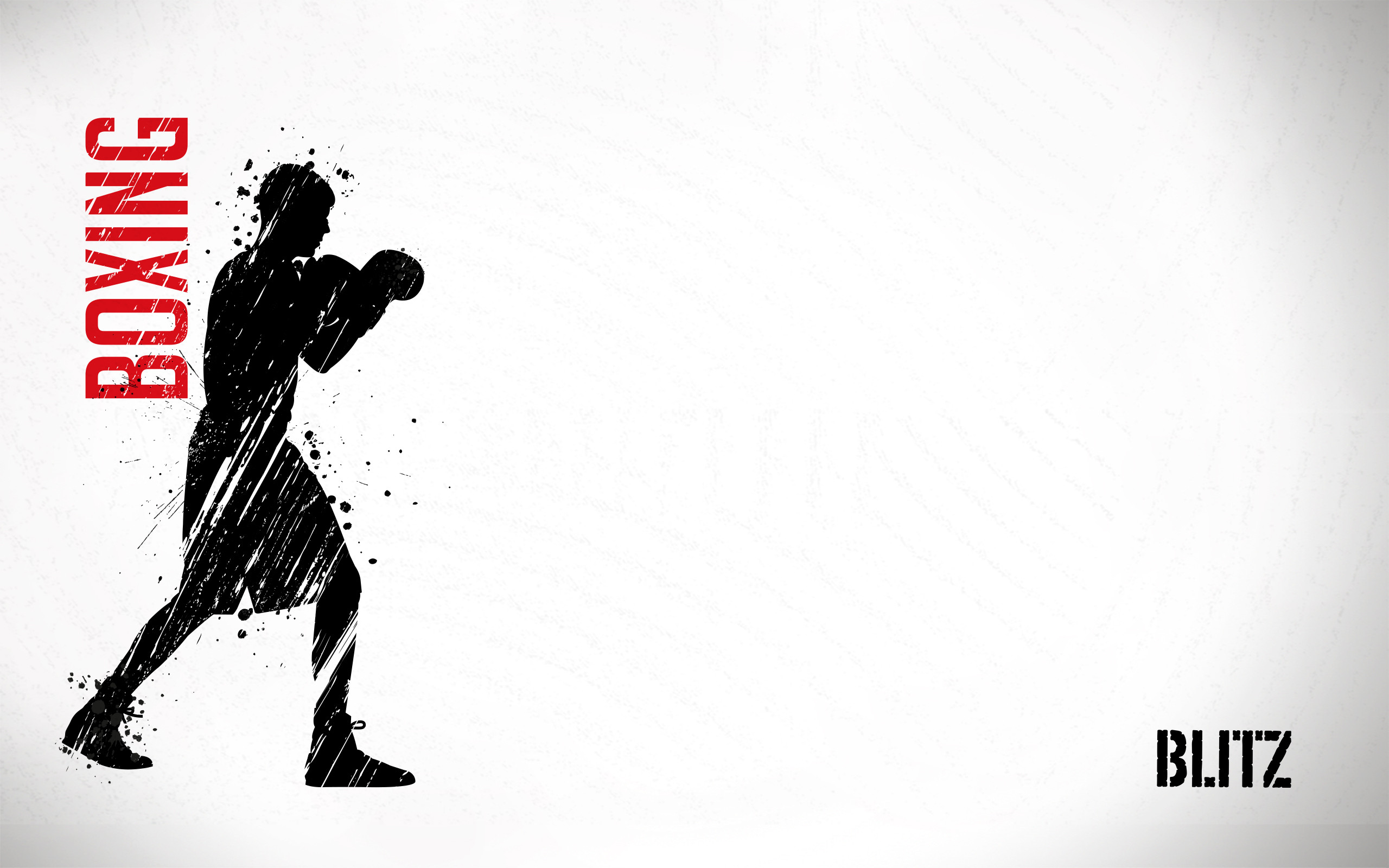 2560x1600 Blitz Boxing Wallpaper (2560 x 1600)