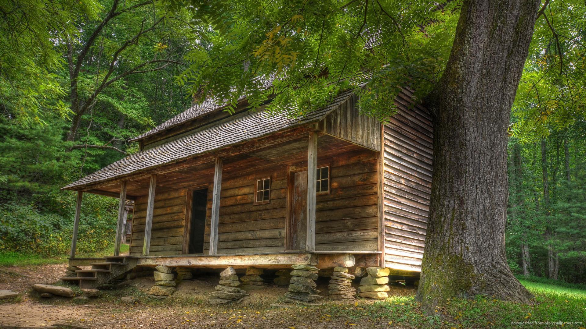 Rustic Log Cabin Wallpaper 56 Images
