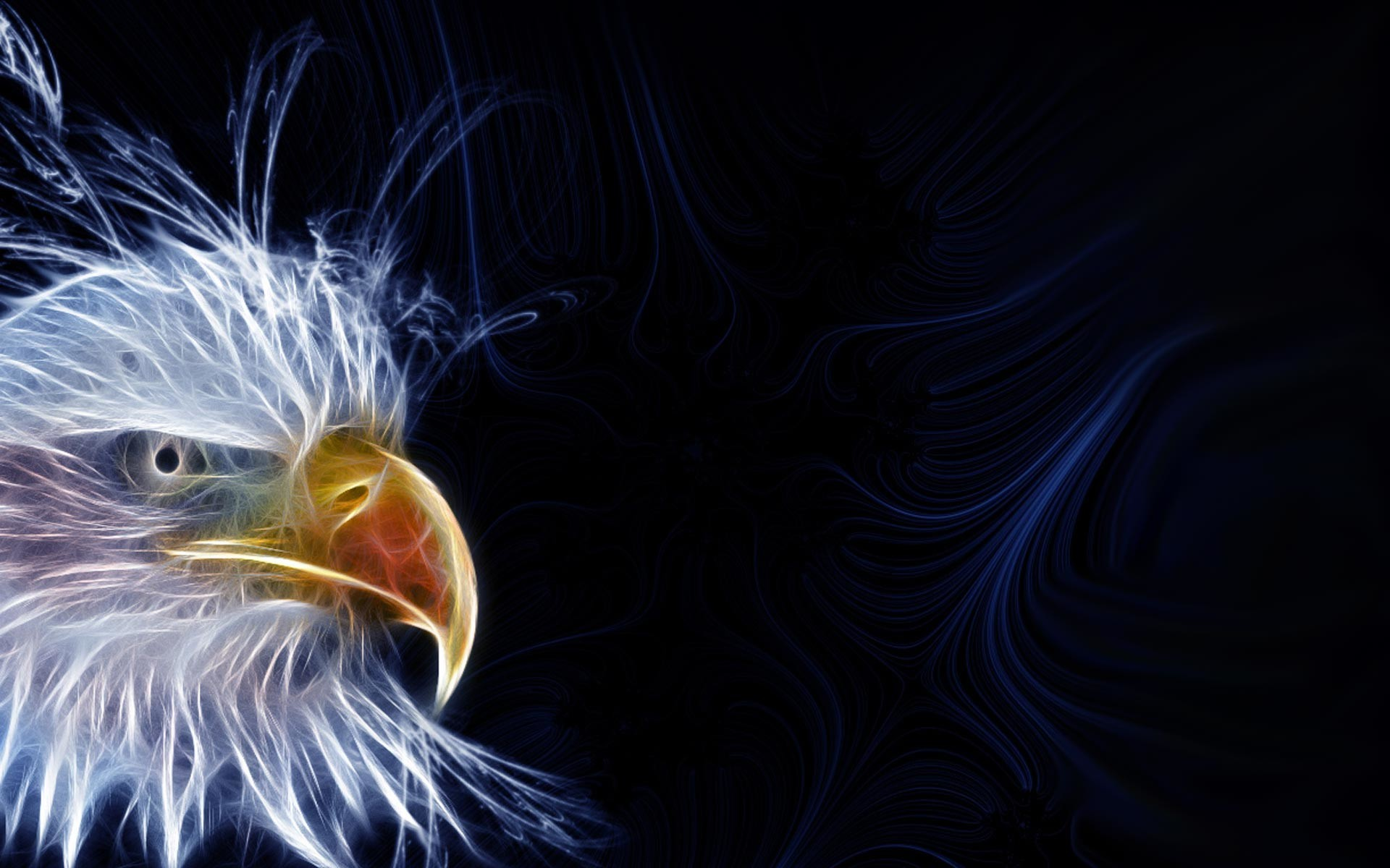 1920x1200 Bald Eagle HD Wallpapers THIS Wallpaper | HD Wallpapers | Pinterest .