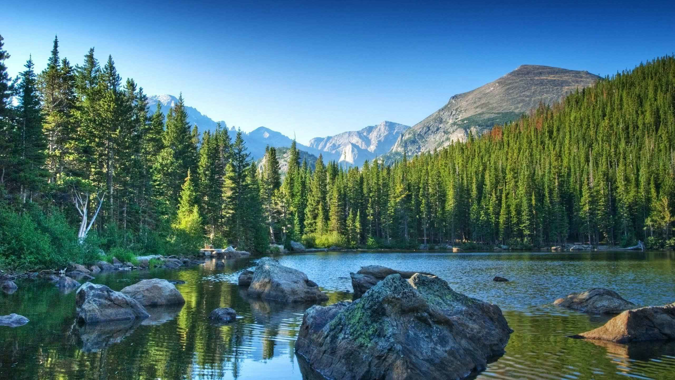 2560x1440 Rivers Forest Nature Mountains Lake Landscape Mountain Nice Desktop  Backgrounds