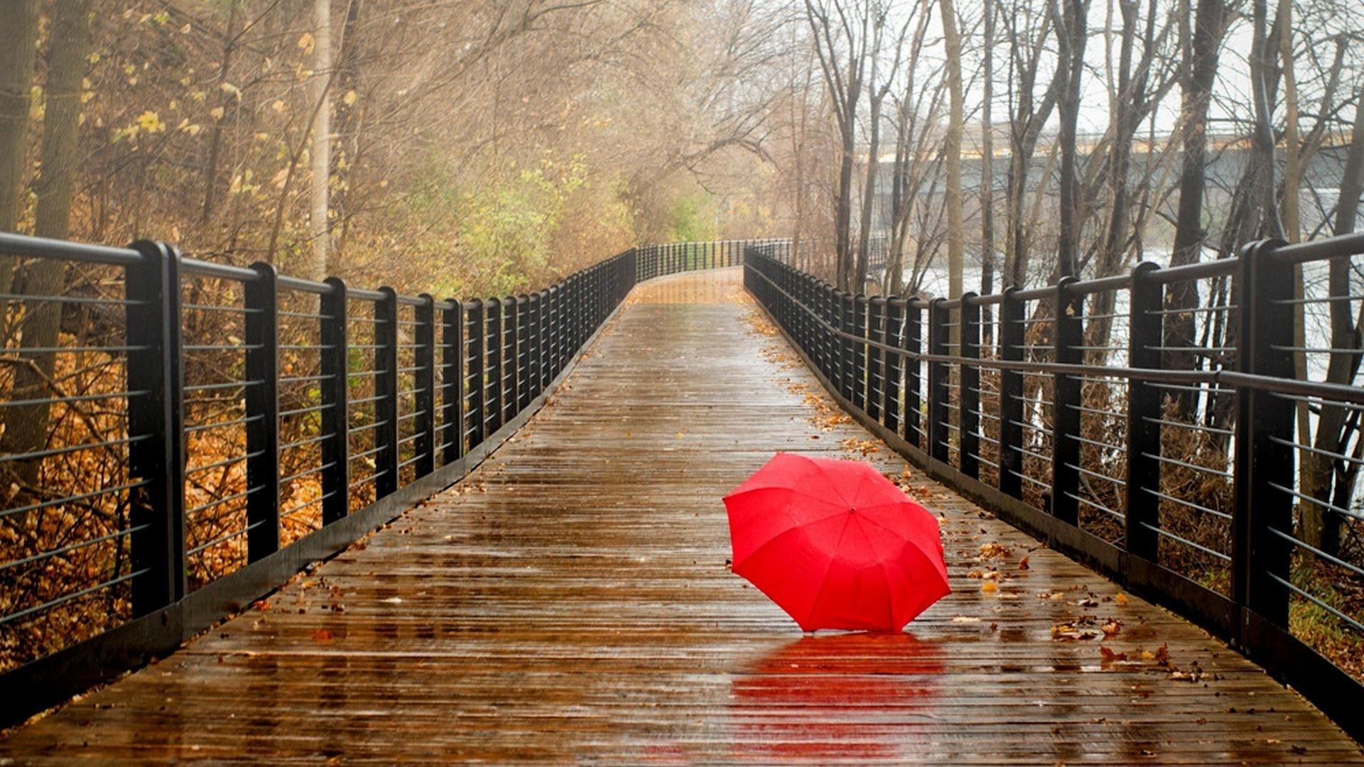 Rainy Day Background (51+ images)