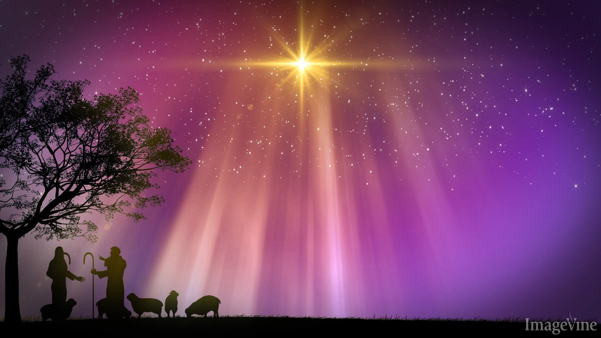 Purple christmas backgrounds 45 images 1920x1080 christian christmas powerpoint backgrounds shepherds nativity star appears thecheapjerseys Gallery