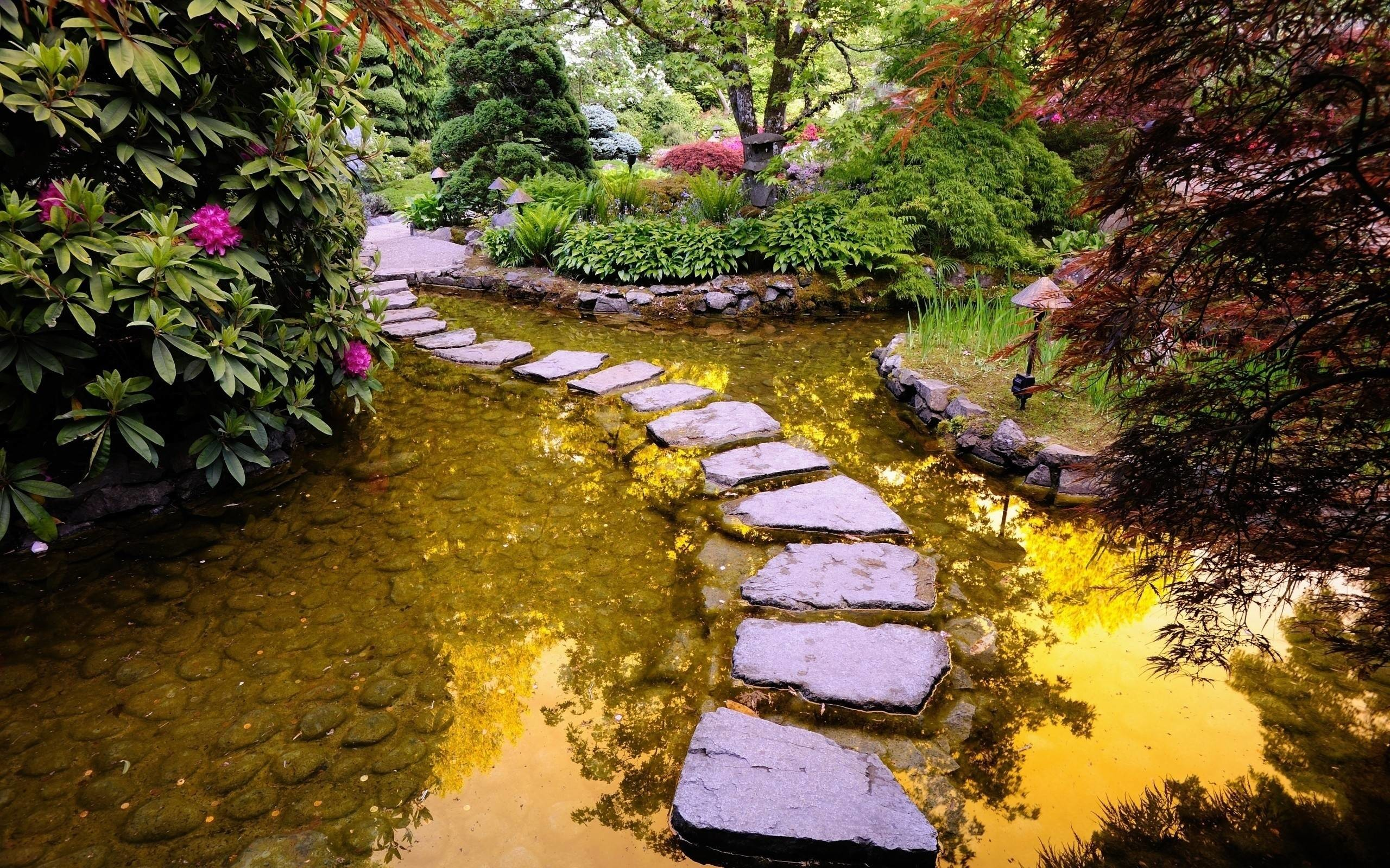 2560x1600 Free Path In Garden Pond Wallpapers, Free Path In Garden Pond HD .