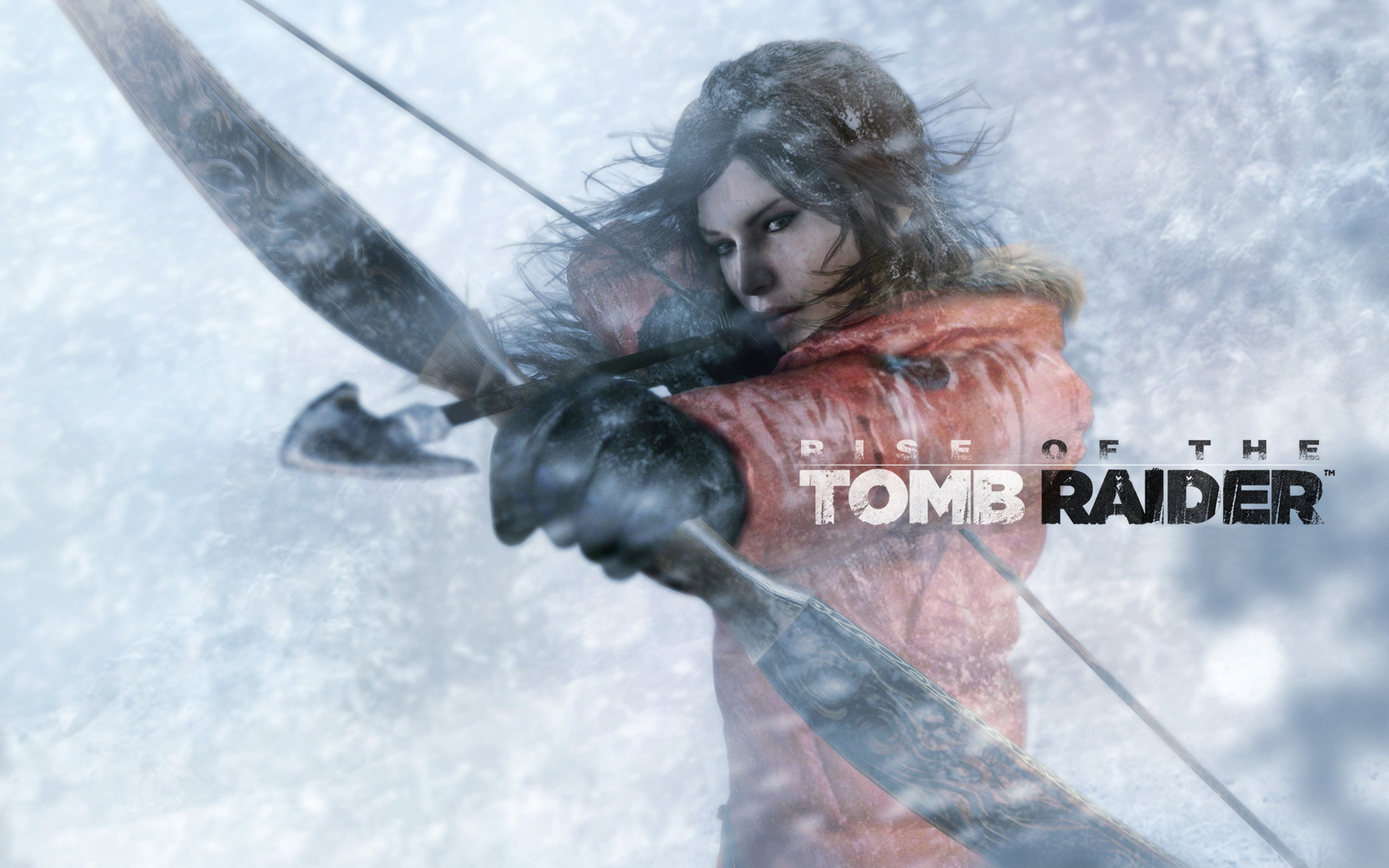 2560x1600 ... rise of the tomb raider game wallpapers hd wallpapers venue ...
