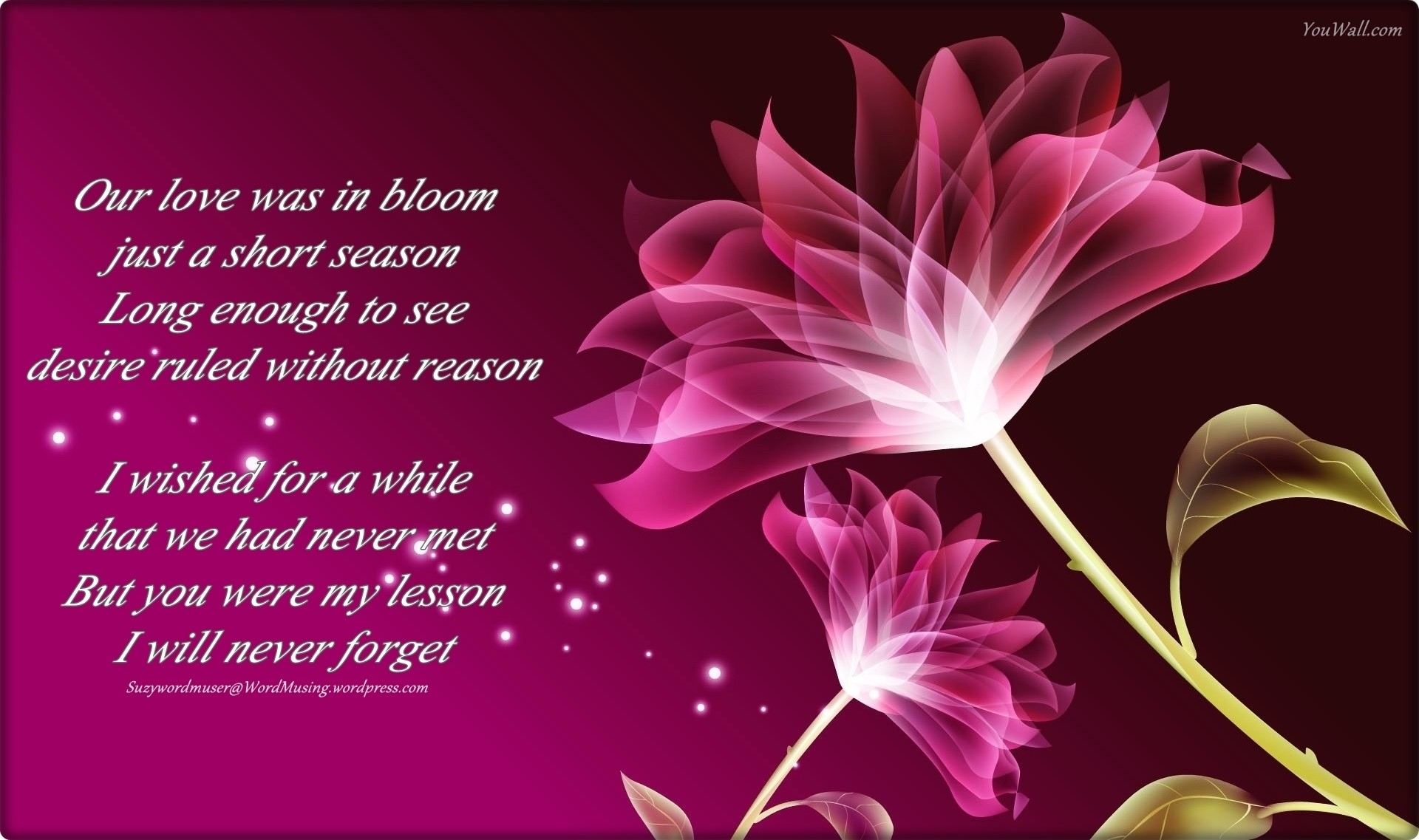 1920x1137 purple flowers poem Wide Wallpaper