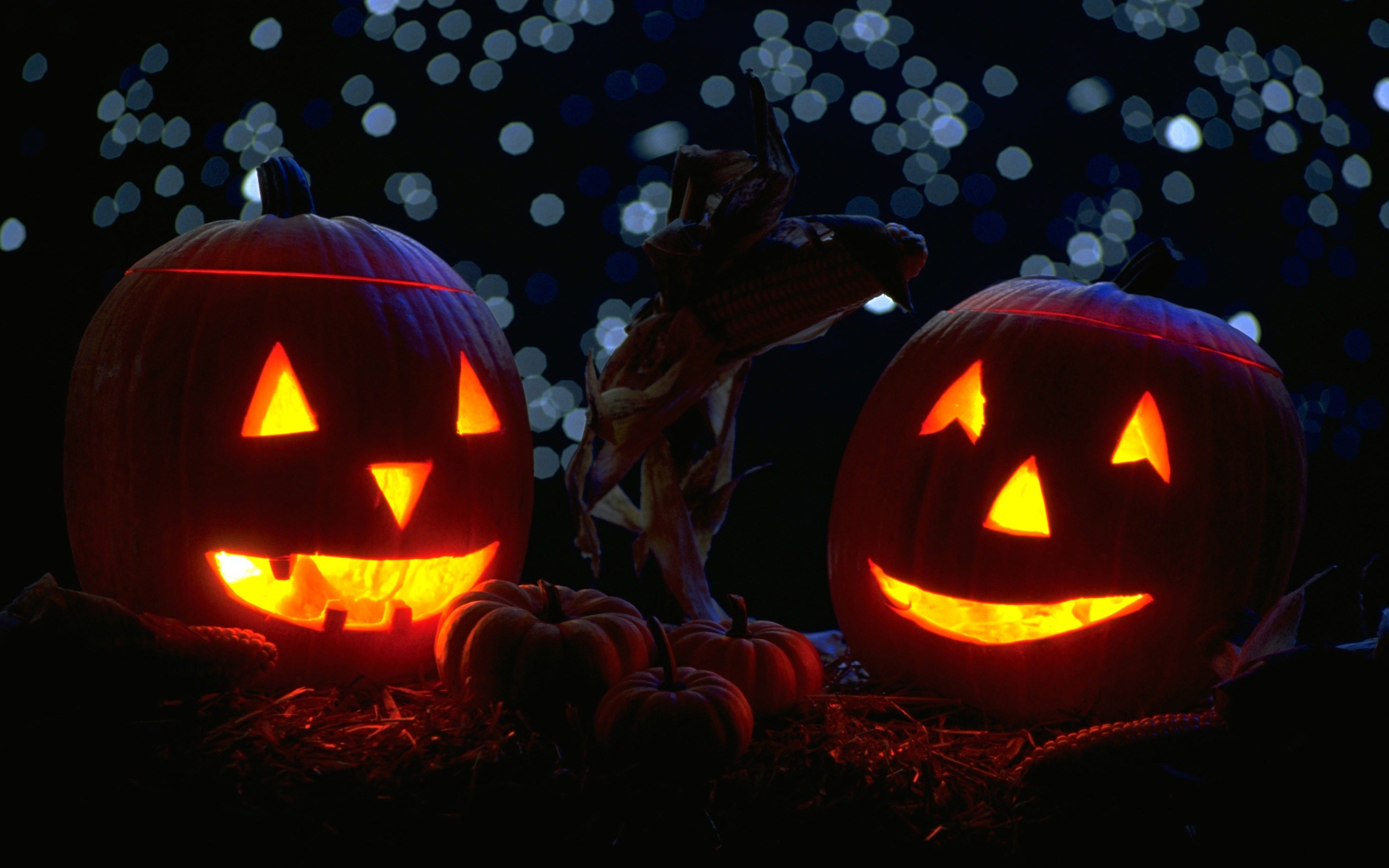 2560x1600 Pumpkins-with-candles-in-the-night-Halloween-Widescreen-