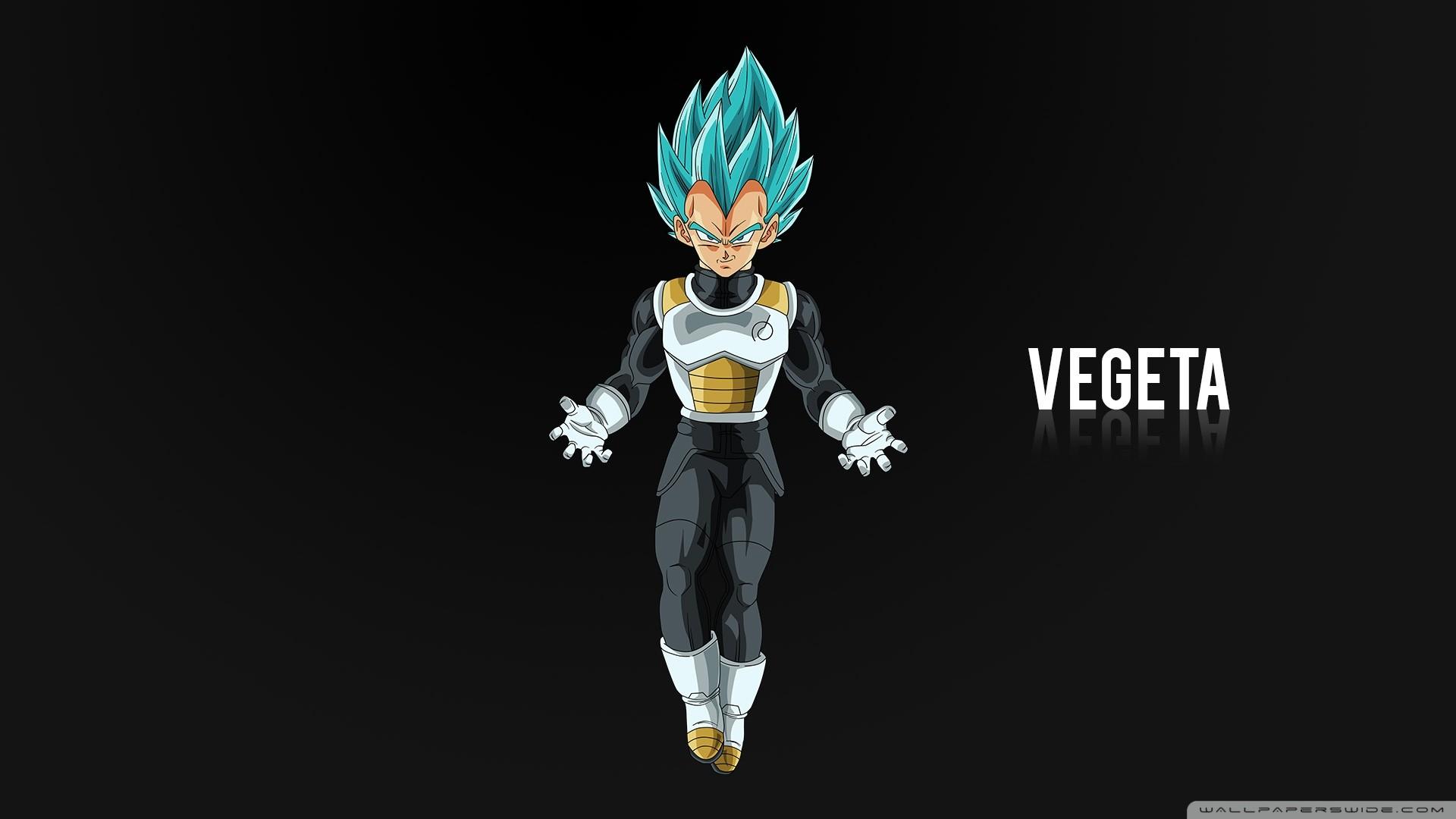 Goku And Vegeta Full Hd Fondo De Pantalla And Fondo De: Vegeta Wallpaper (63+ Images