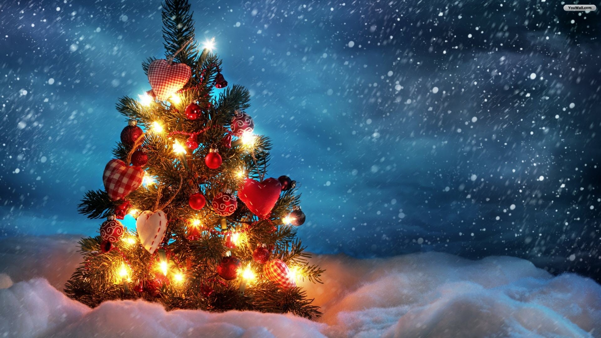 1920x1080 Explore Christmas Tree Wallpaper, Xmas Tree, and more!