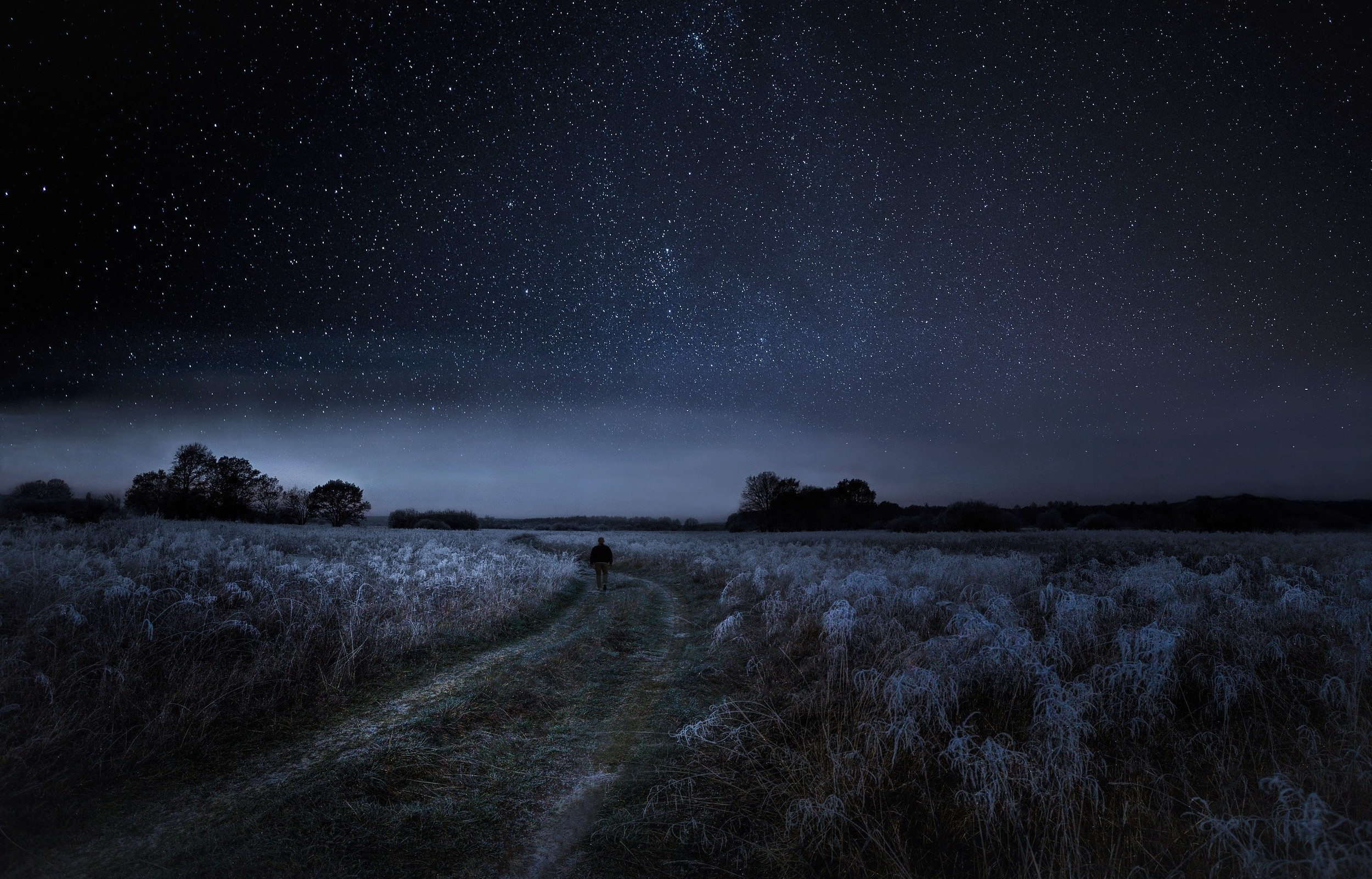 2500x1601 walking, Nature, Landscape, Starry Night, Dirt Road, Frost, Shrubs, Field,  Trees, Moonlight Wallpapers HD / Desktop and Mobile Backgrounds