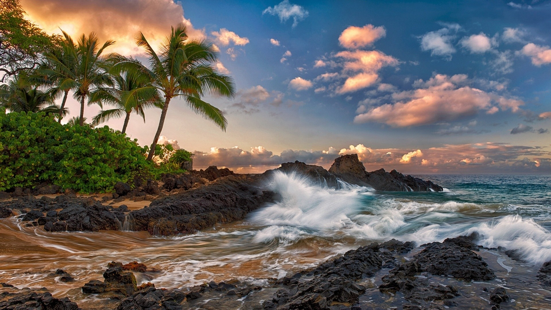 1920x1080 Preview wallpaper maui, hawaii, pacific ocean, rock, surf, rocks, palm