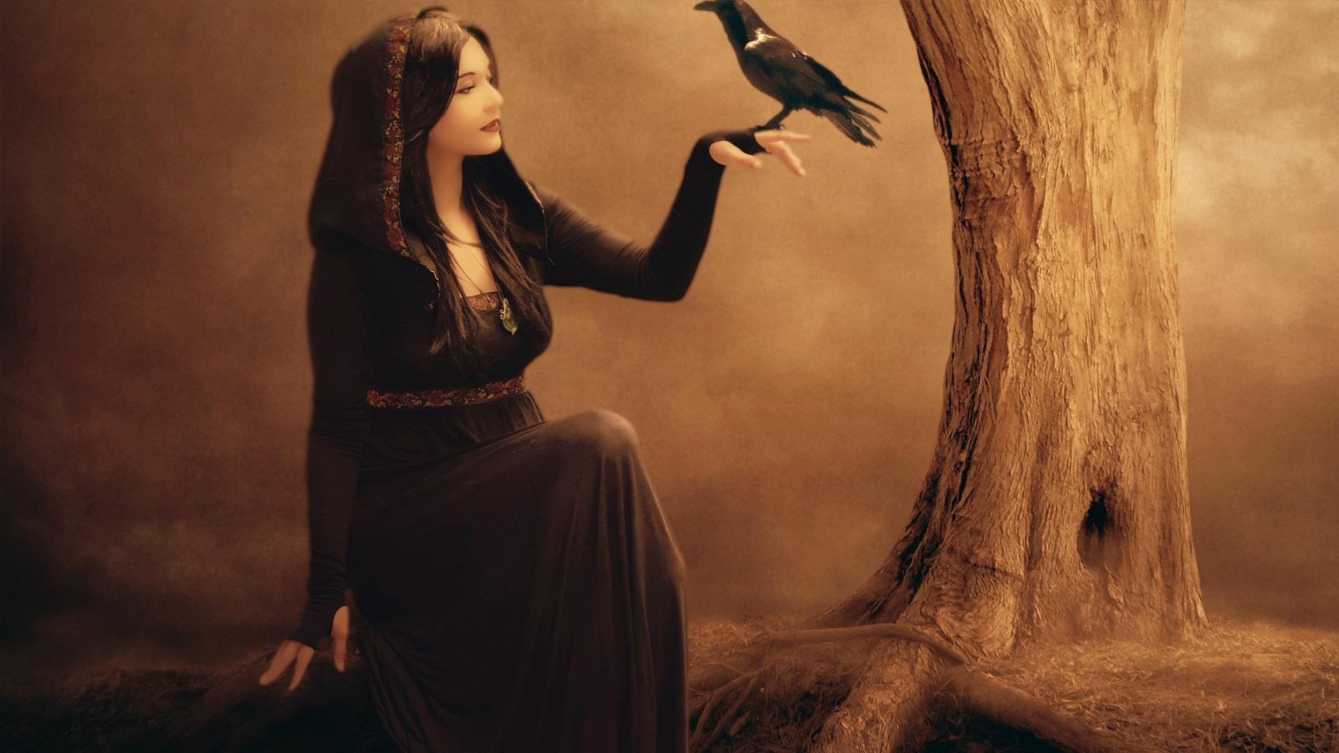 1920x1080 Download now full hd wallpaper gypsy fortune teller raven tree ...