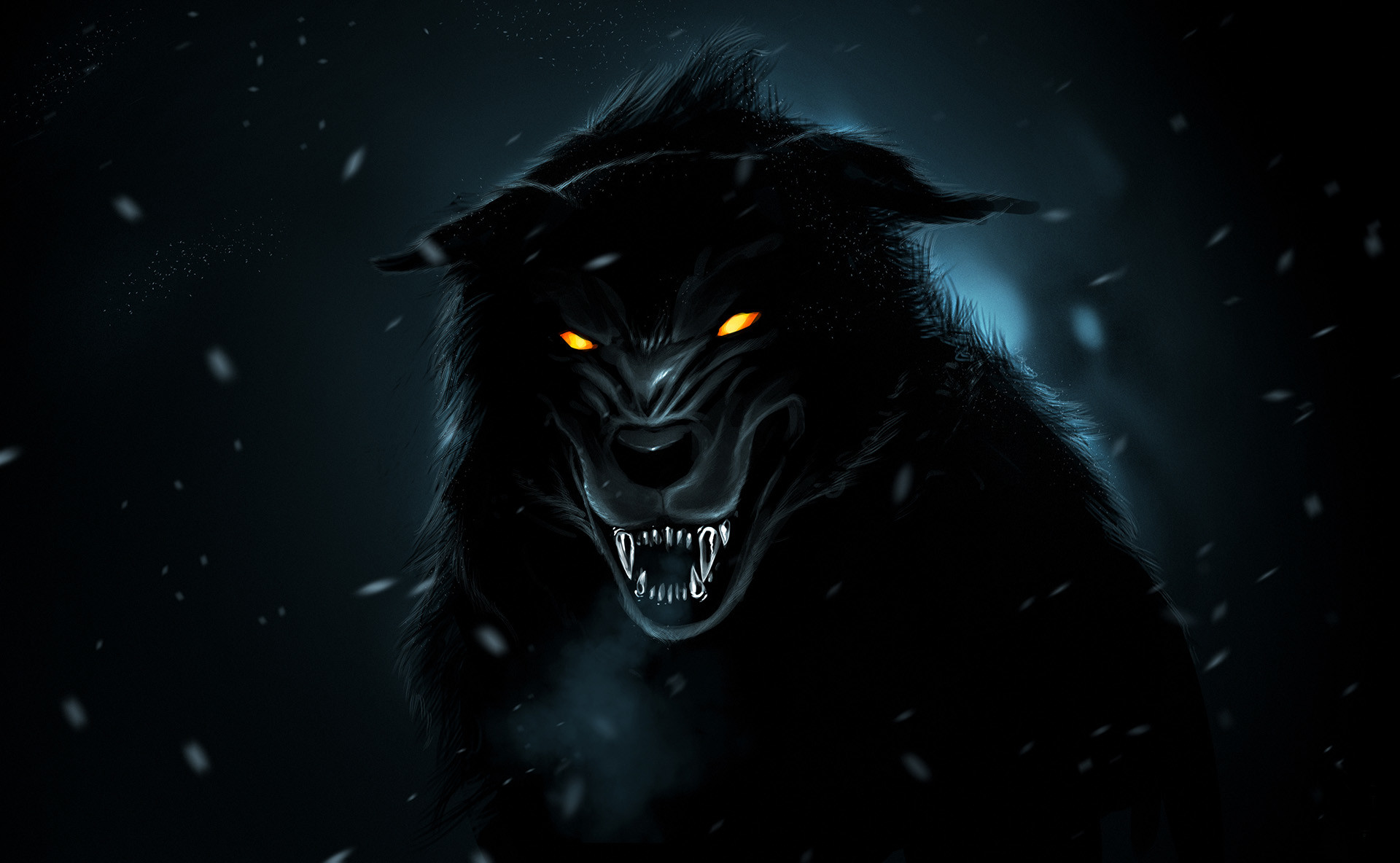 1920x1184 Black Wolf Wallpapers HD