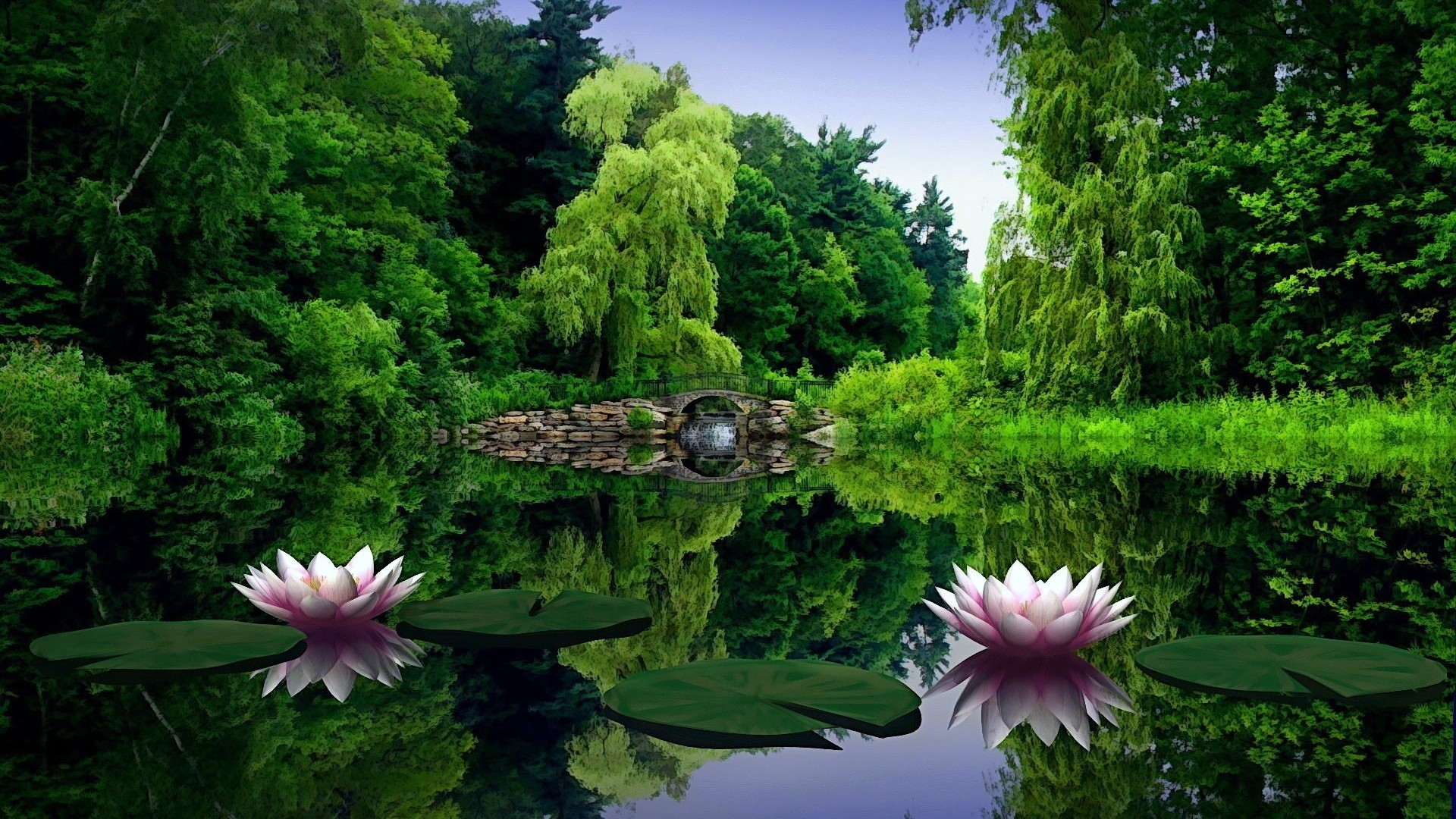 1920x1080 Preview wallpaper water lilies, water, leaves, pond, bridge, trees, beauty
