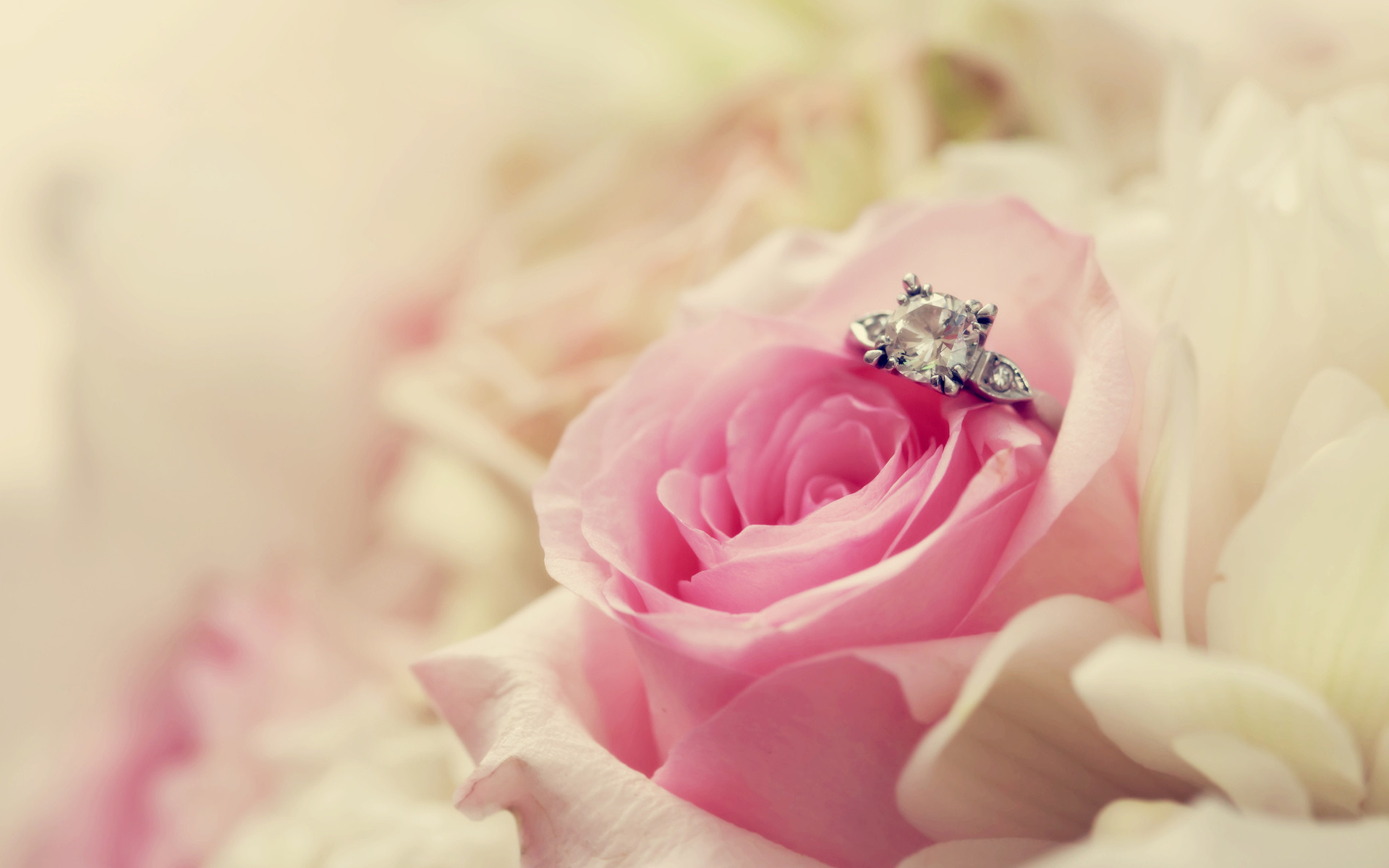 Wedding Ring Wallpaper (61+ images)