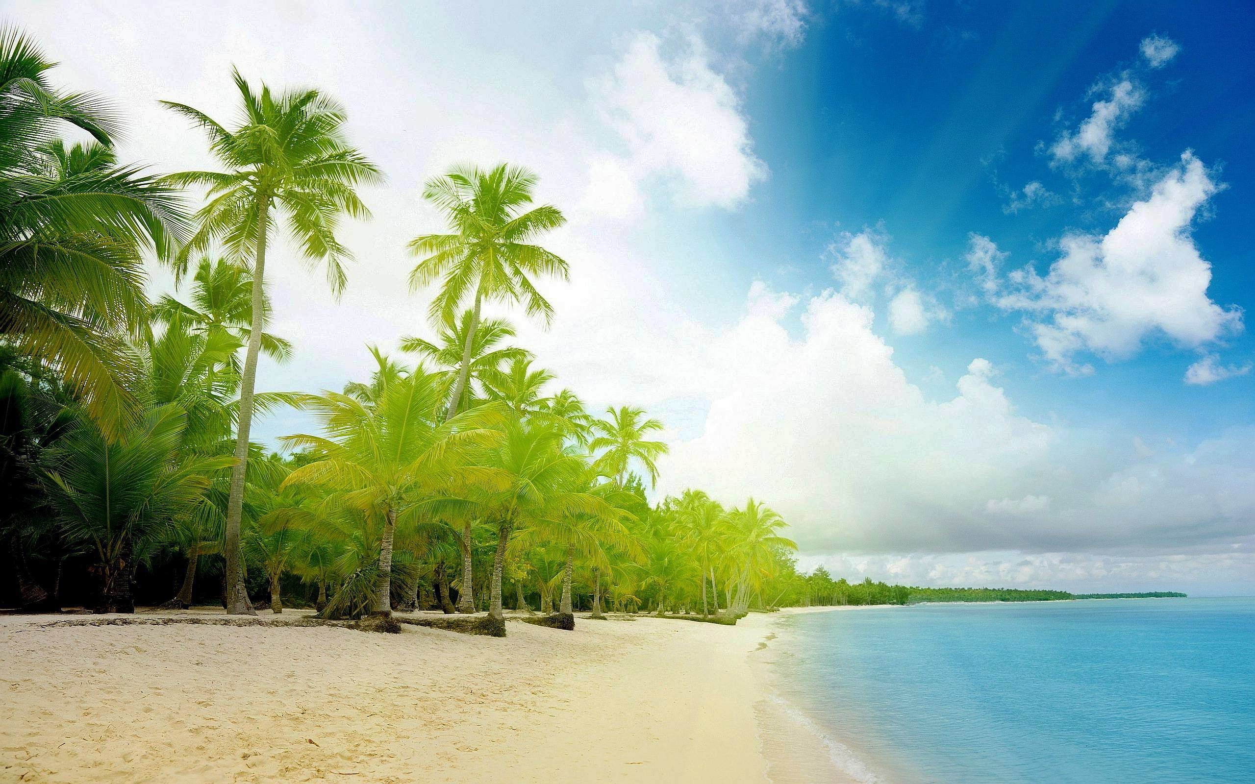 2560x1600 Exotic Beaches Wallpapers Hd 1080P 12 HD Wallpapers | aladdino.