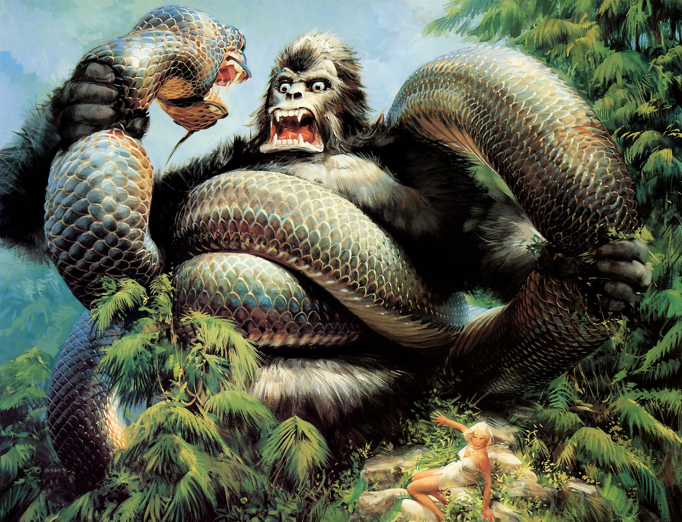 2291x1753 king kong fight of big snake