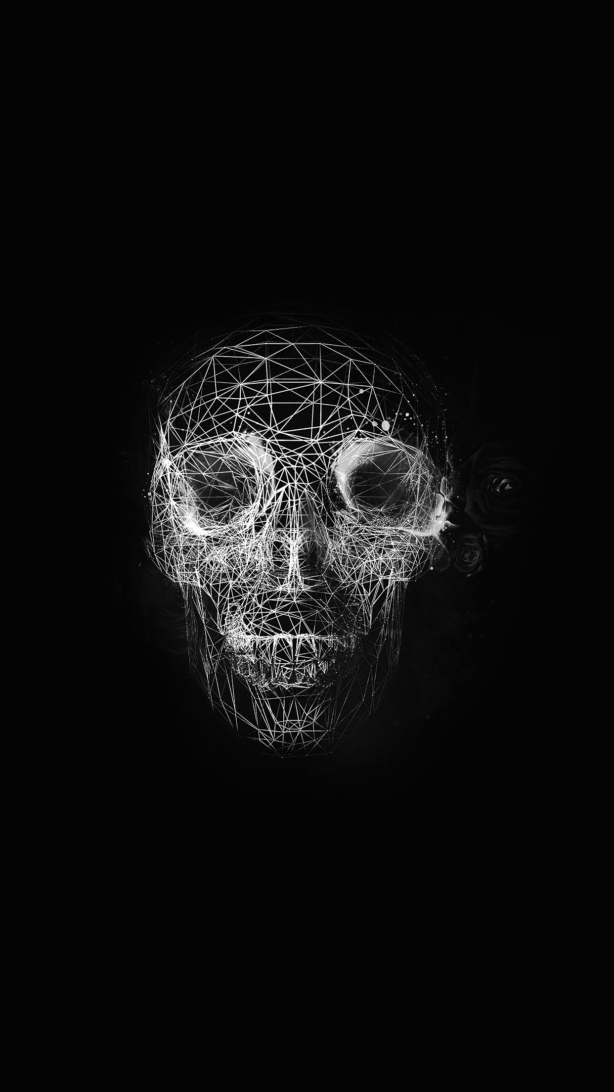 Res: 1242x2208, Pirate Skull HD Wallpaper For Your Android Phone