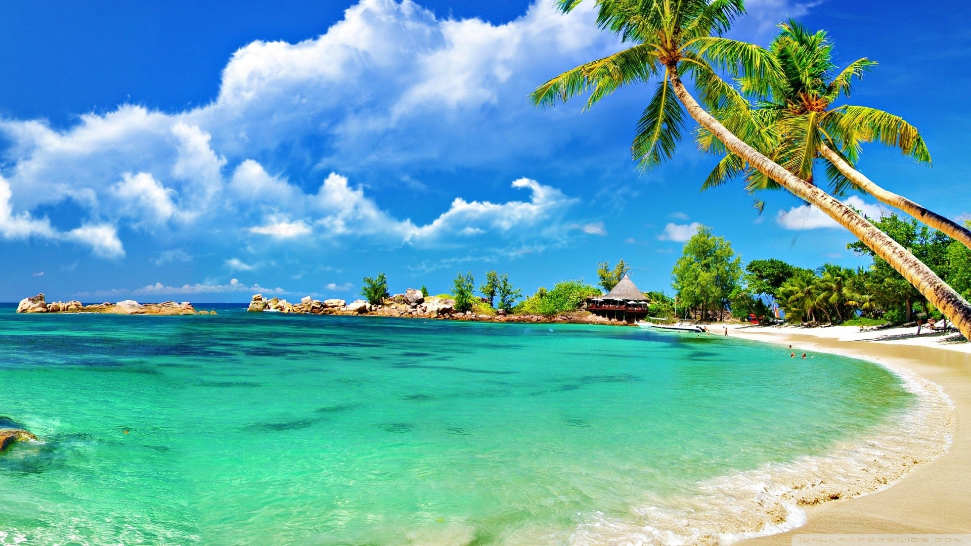 1920x1080 Tropical Beach Desktop Wallpaper 35752
