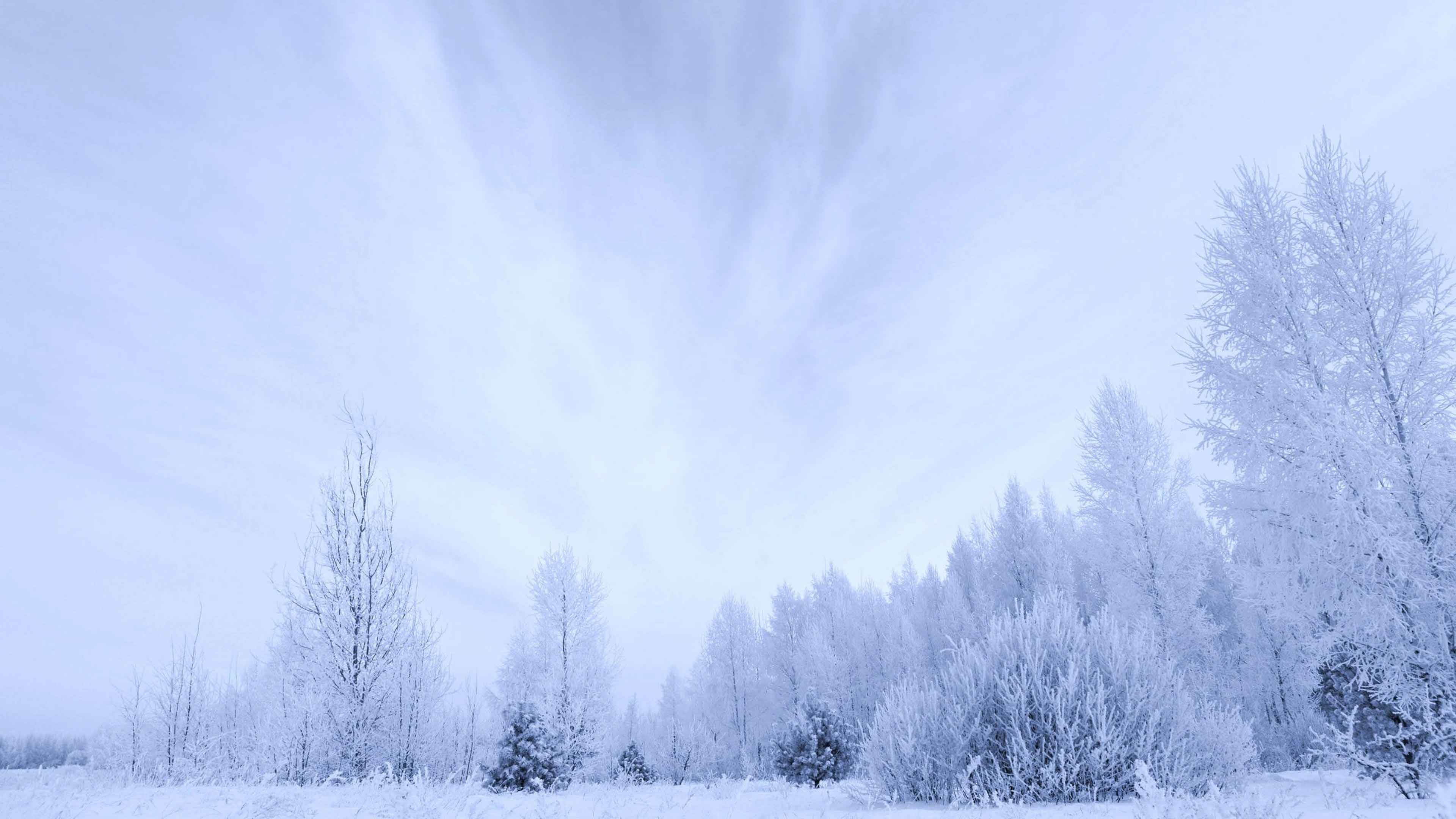 3840x2160 Landscapes Snow White Nature Clouds Sky Forest Trees Countryside Earth  Winter Background Wallpaper Of