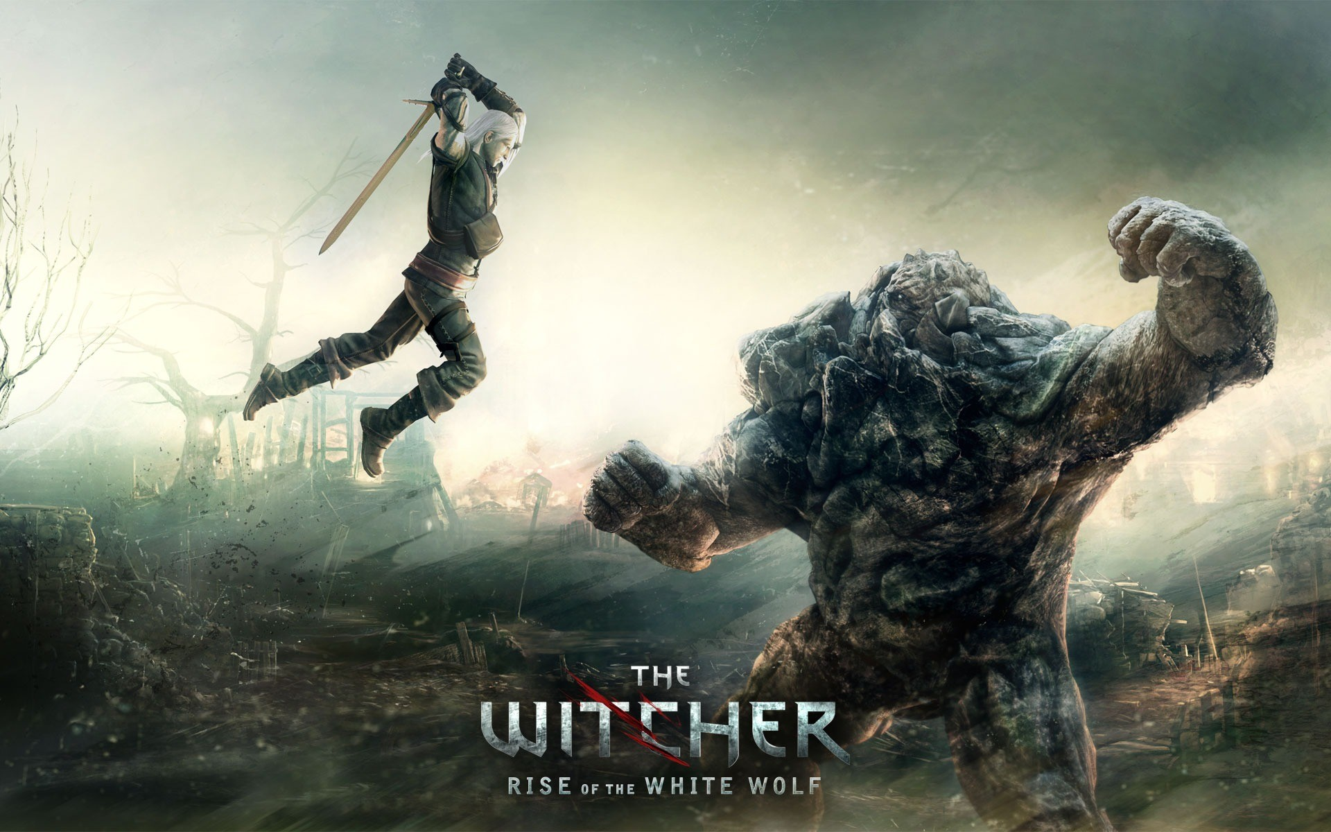 1920x1200 The Witcher Rise of the White Wolf Wallpaper The Witcher Games Wallpapers