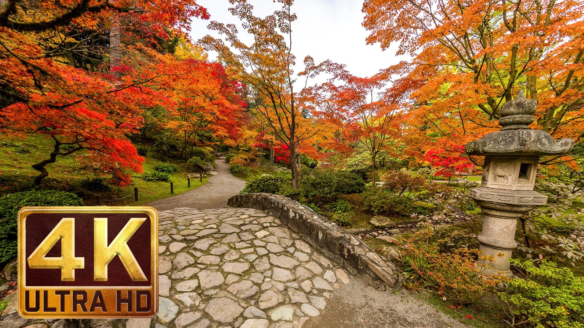 1920x1080 Japanese Garden 4K resolution - 1 hour - Nature Sound for Relaxation -  Autumn - YouTube