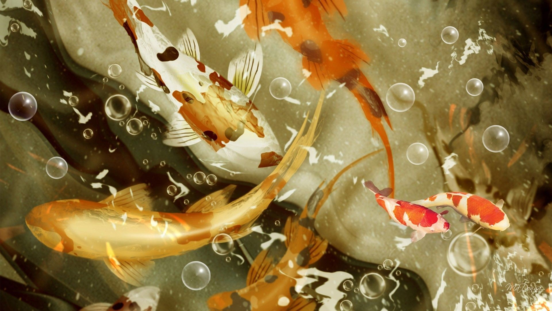 1920x1080 HD Koi Fish Wallpaper