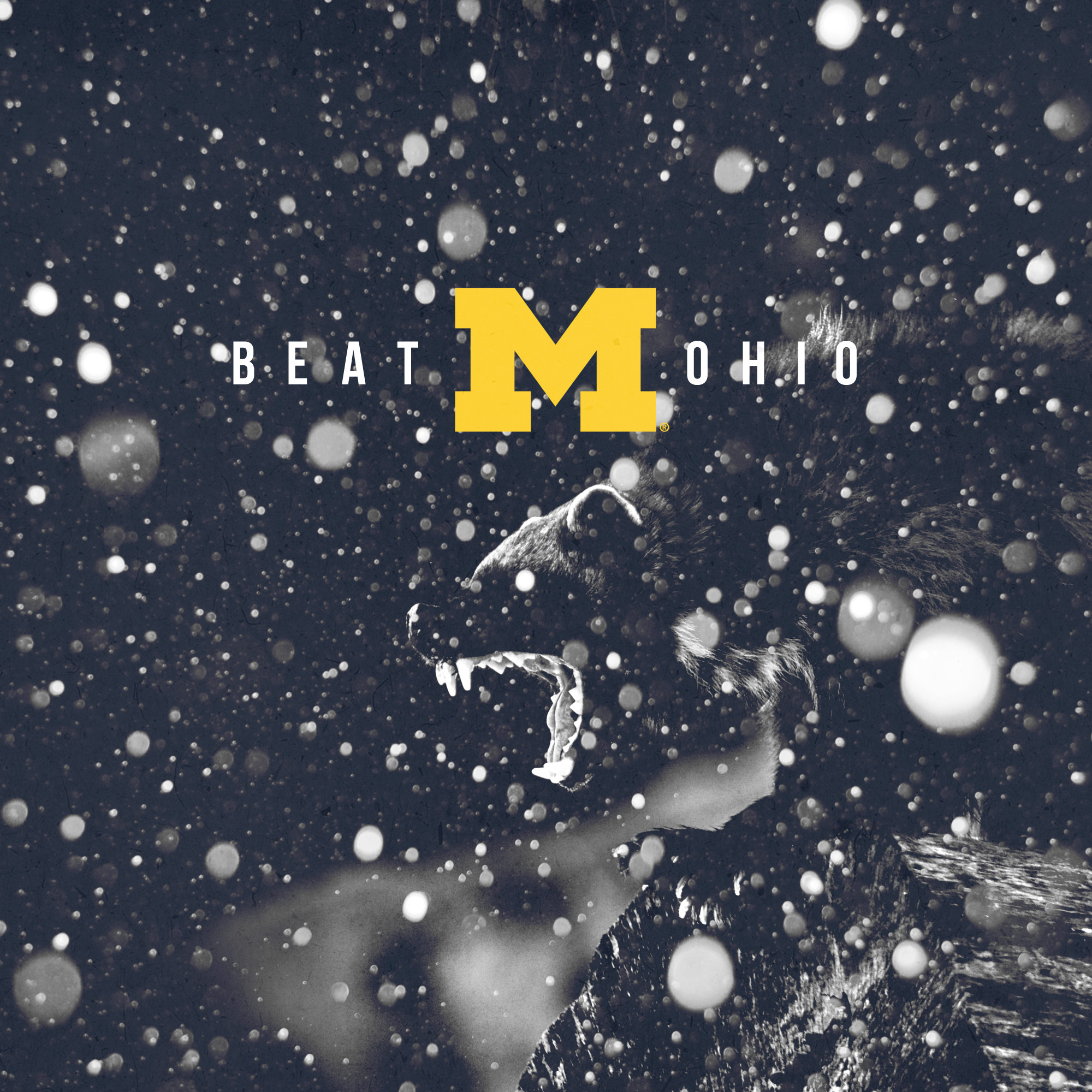 2000x2000 Go Blue - Beat Ohio - square format