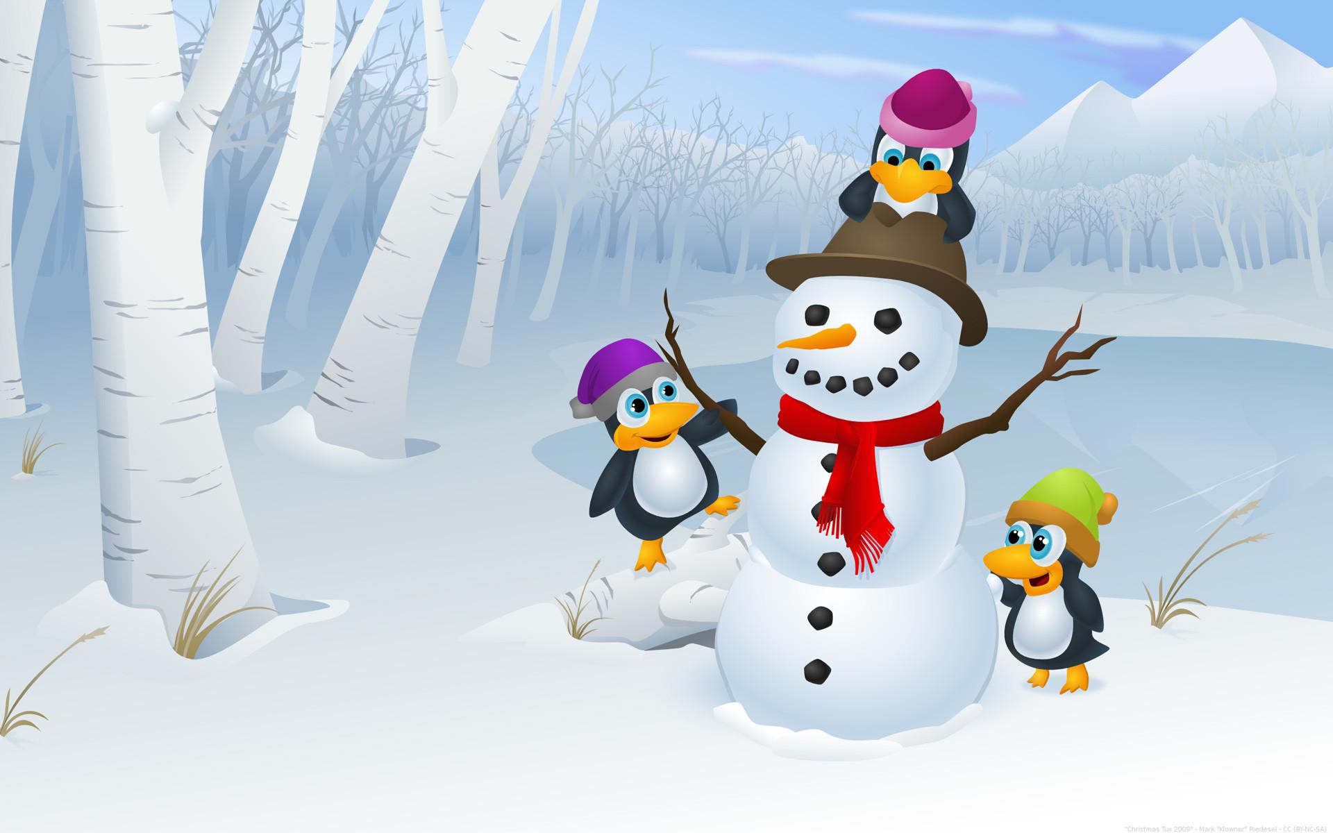 cute penguin backgrounds 38 images