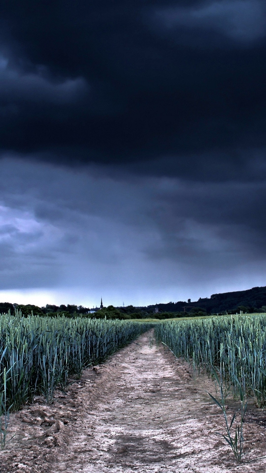 1080x1920 Preview wallpaper sky, clouds, bad weather, dark blue, gloomy, wheat,