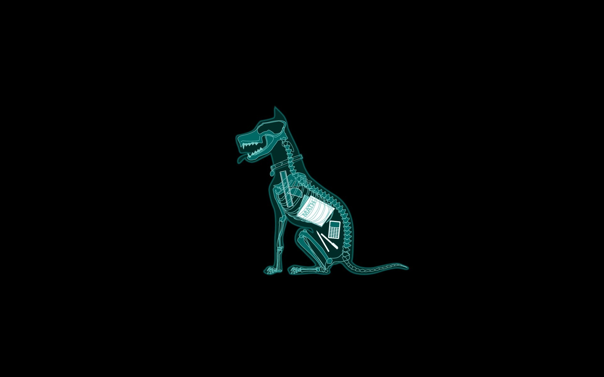 1920x1200 Anatomy Black Background Dark Dogs Funny Mathematics Minimalistic Simple  X-Ray