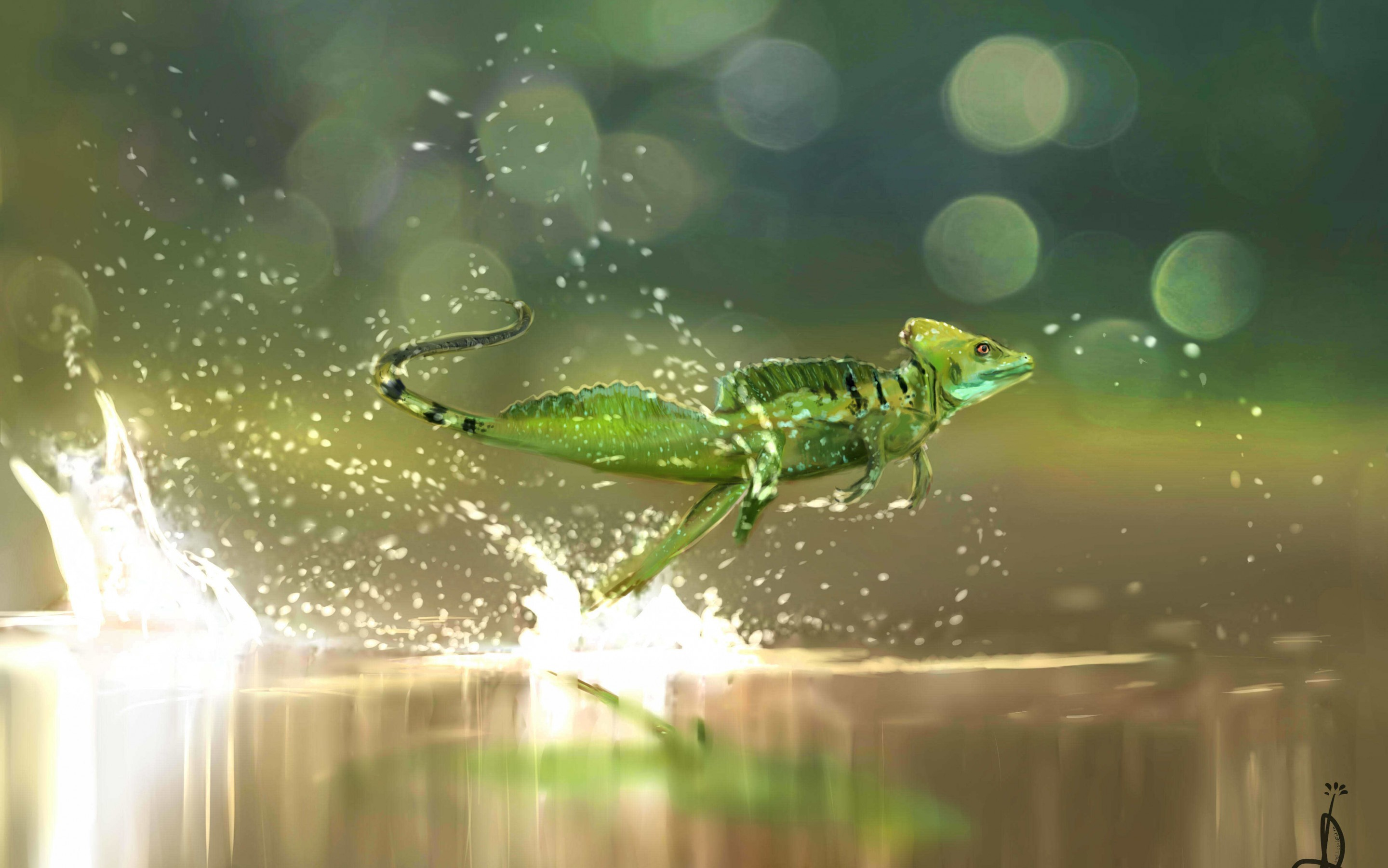 Res: 2880x1800, V.1.7 497.3 Kbytes | Lizard on the water | big type