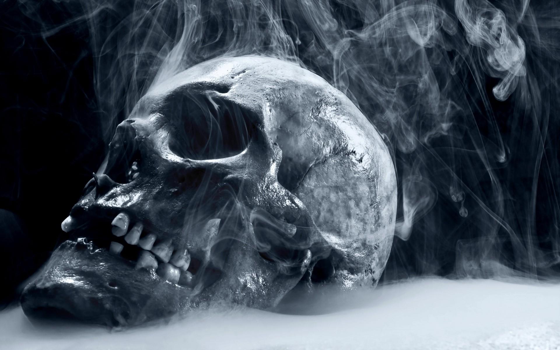 Skull hd wallpaper 66 images - Skull 4k images ...