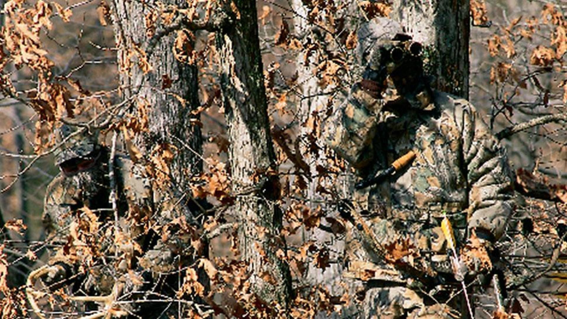1920x1080 Free Mossy Oak Desktop Wallpaper, Image ID:100242737, High Quality Creative