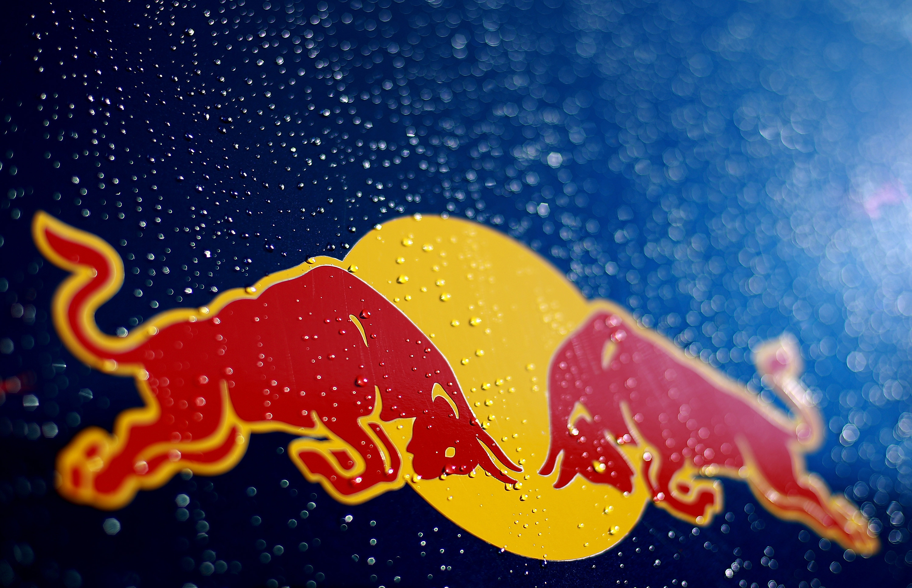 Red Bull Wallpaper 69 Images
