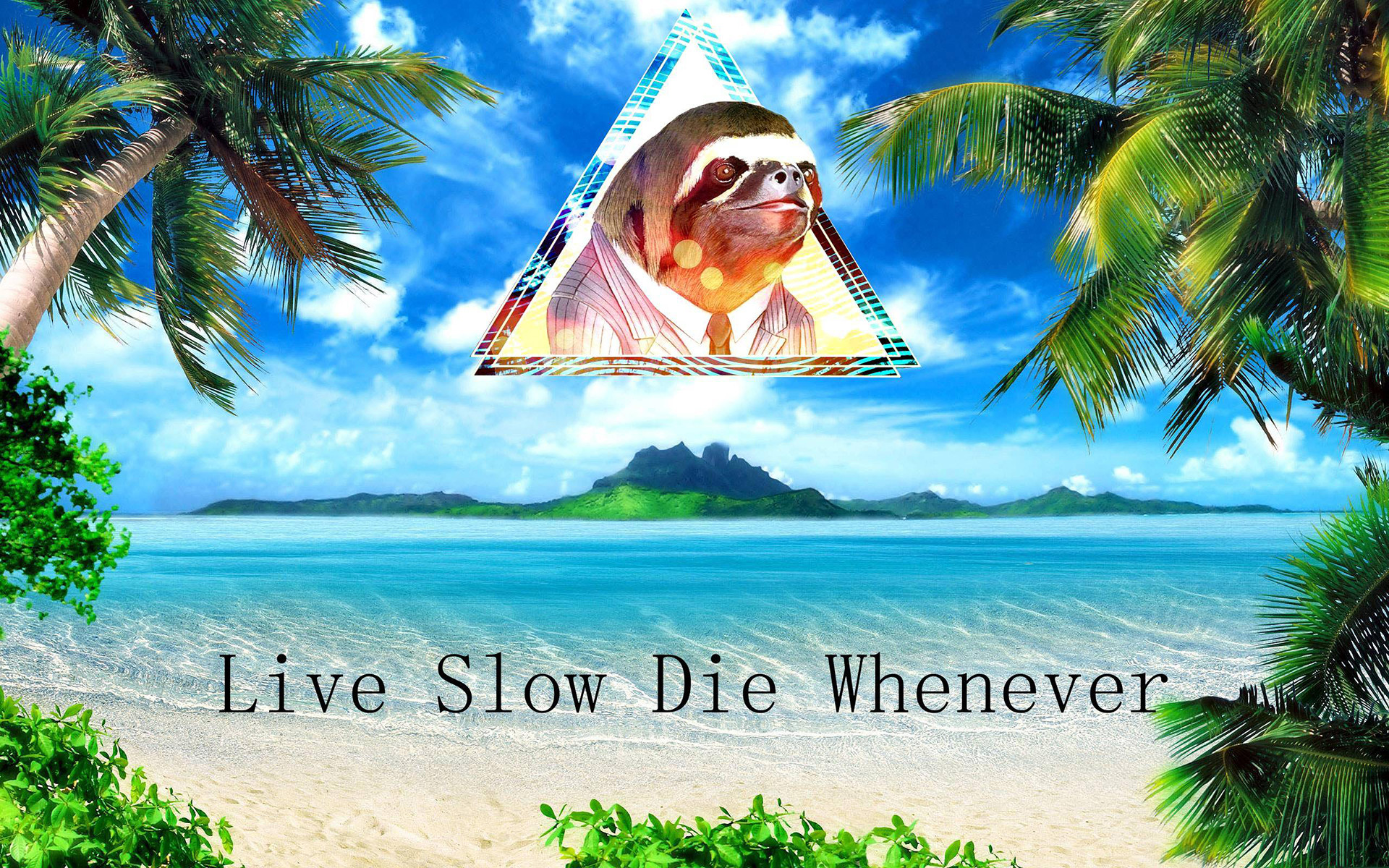 1920x1200 humor funny sloth islands ocean sea tropical palm trees quotes statement  text wallpaper
