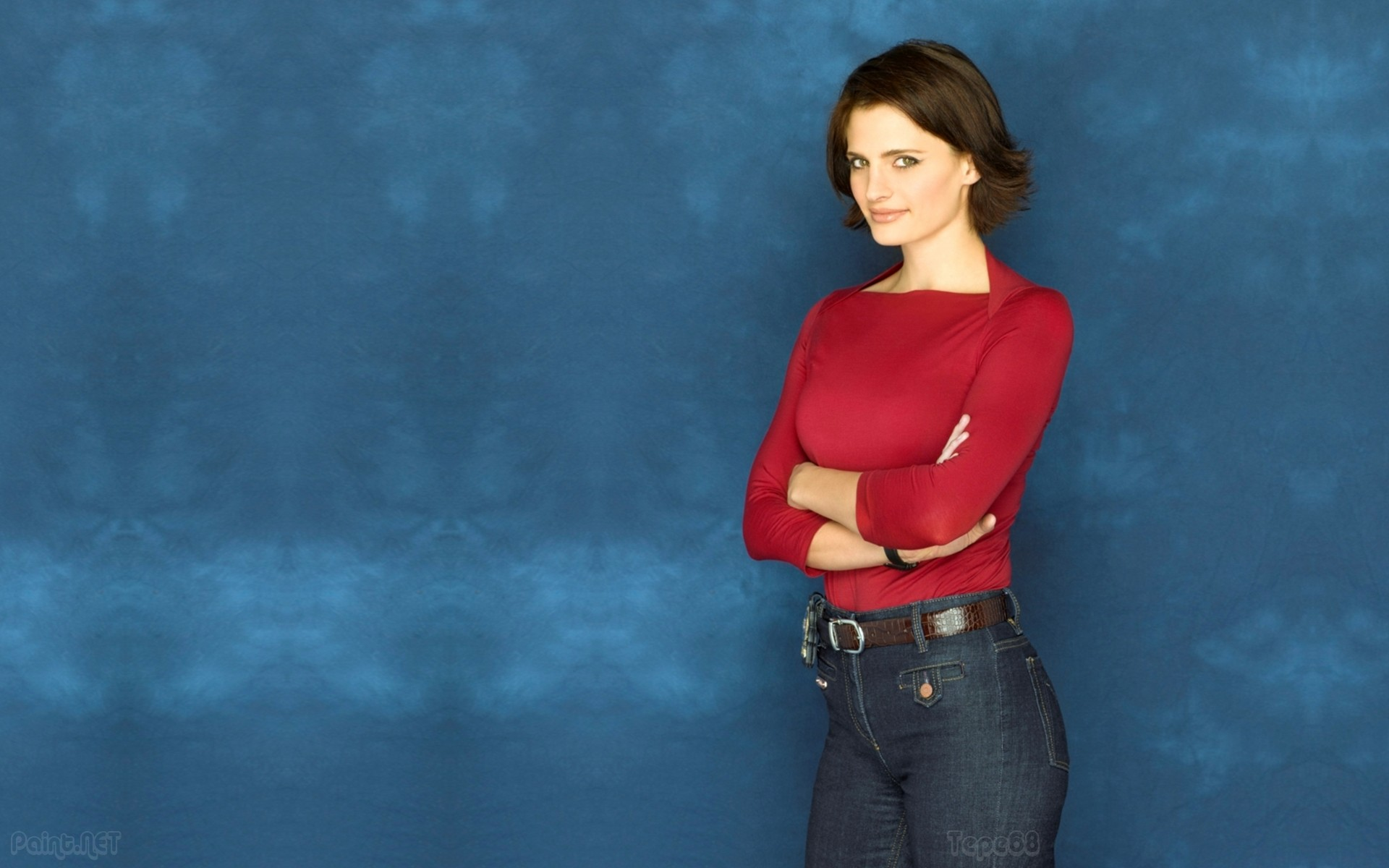 1920x1200 Stana Katic wallpapers