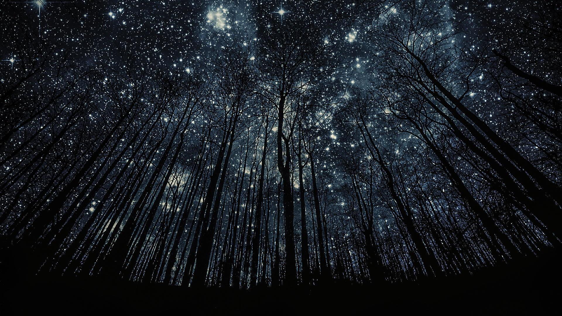 hd wallpaper night sky 70 images