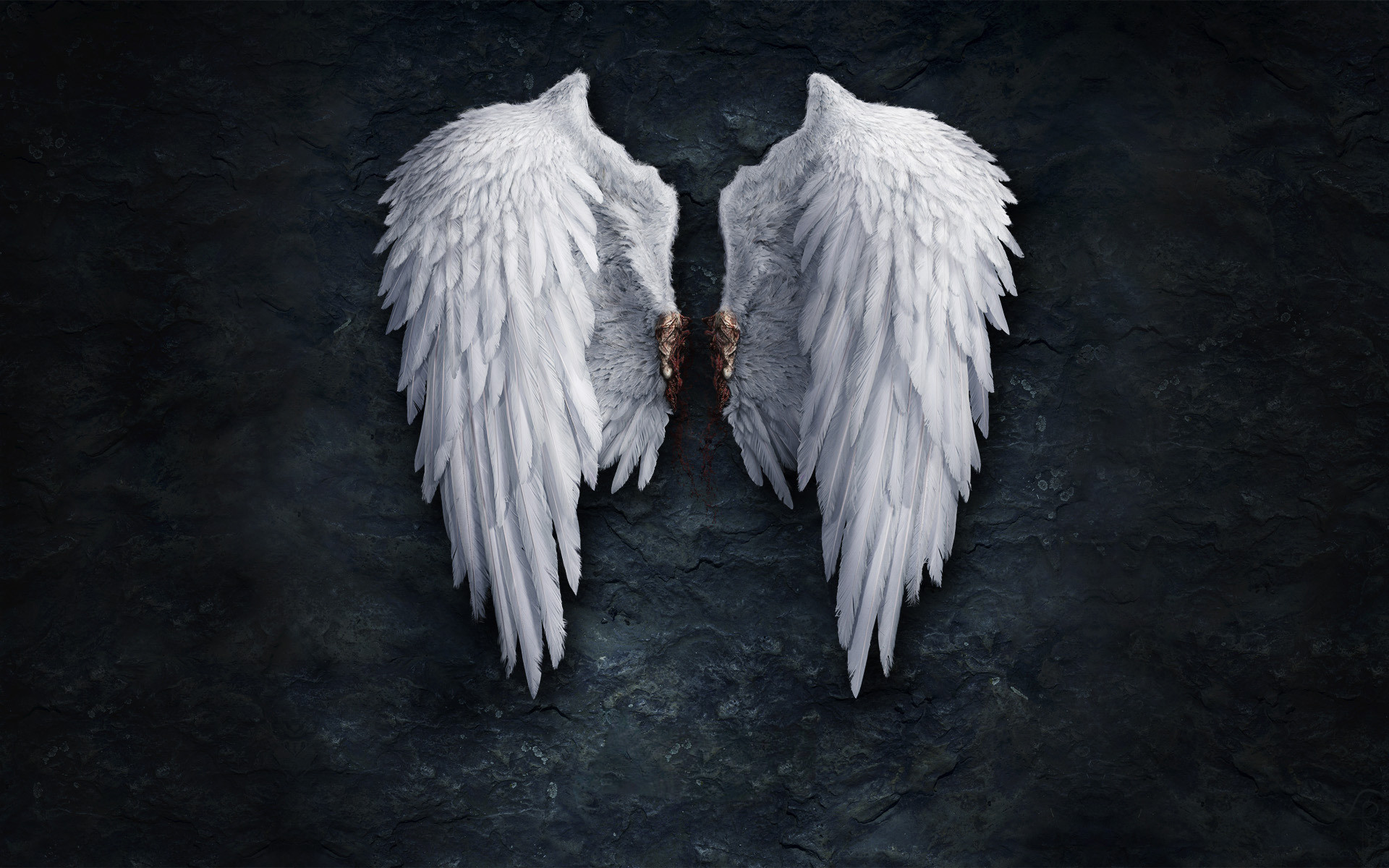 1920x1200 Angel Wings Wallpaper