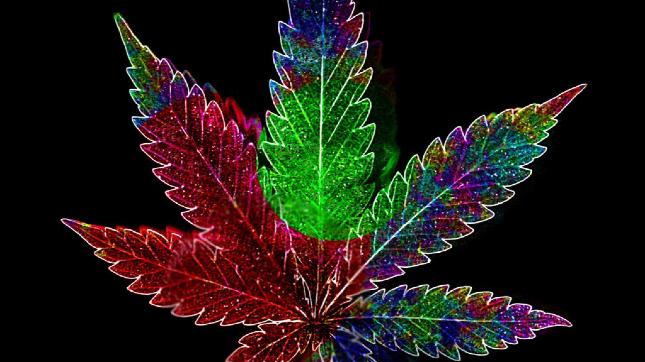 1280x2272 Marijuana Iphone Wallpapers
